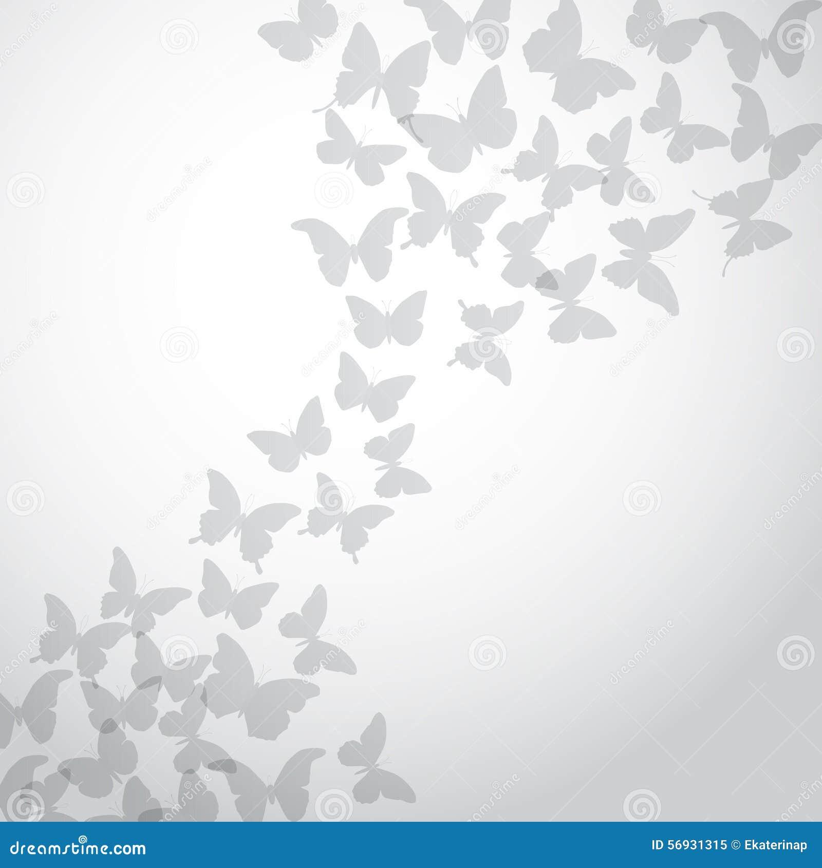 Fond Gris Abstrait De Papillon Sur Le Fond Blanc Vecteur