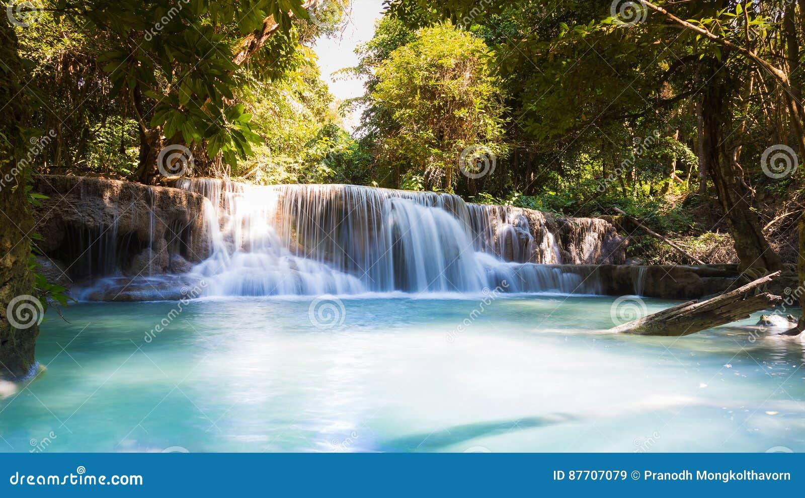 Fond naturel de paysage de cascade profonde de forêt
