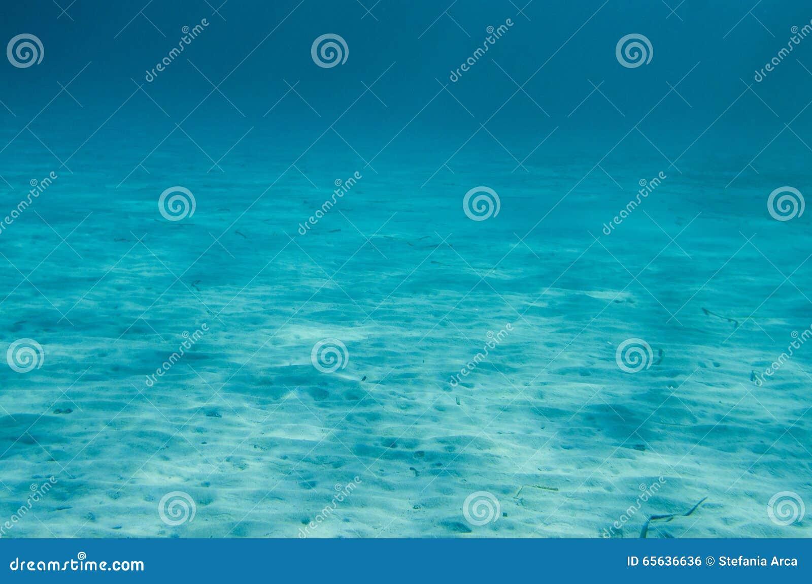 Fond océanique sous-marin