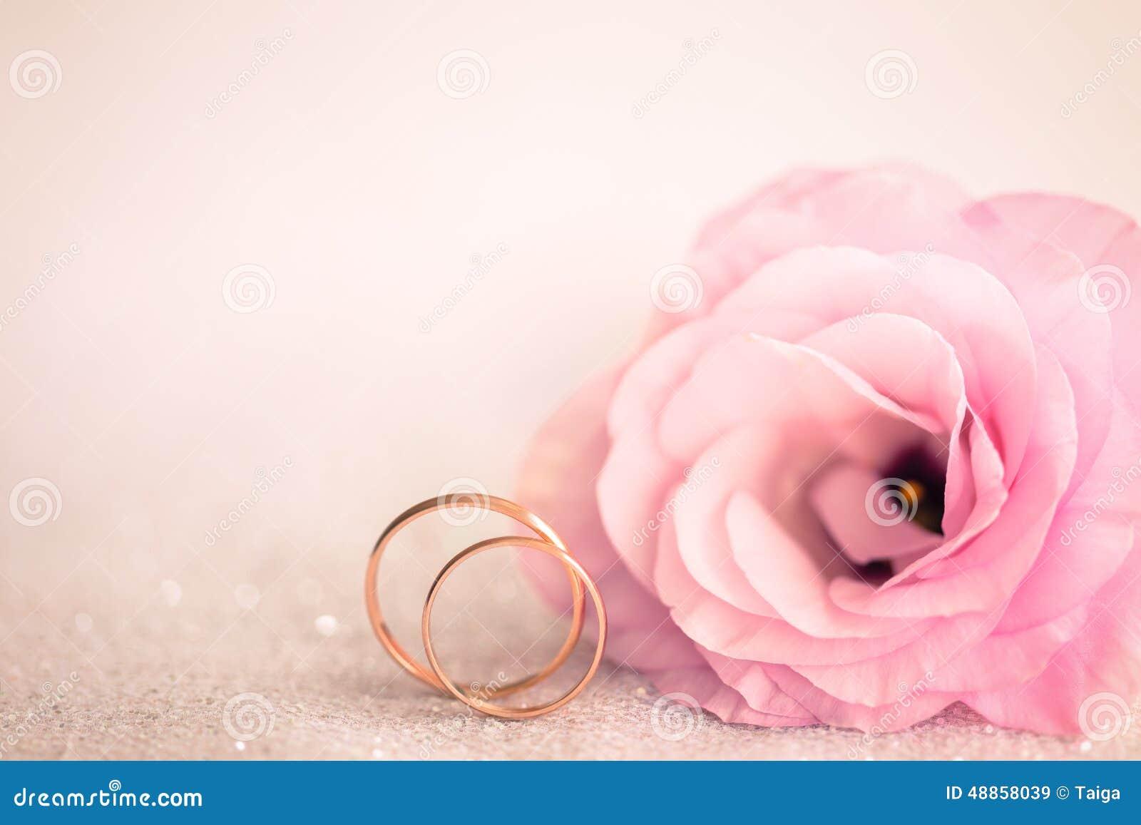 Fond Rose Doux De Mariage Avec Les Anneaux Et La Fleur Photo stock ...