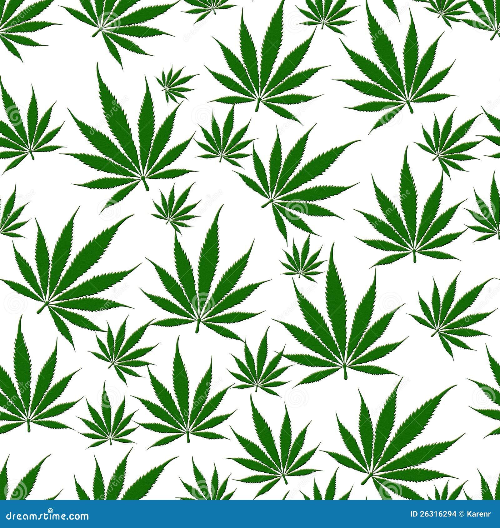 Fond sans couture de feuille de marijuana