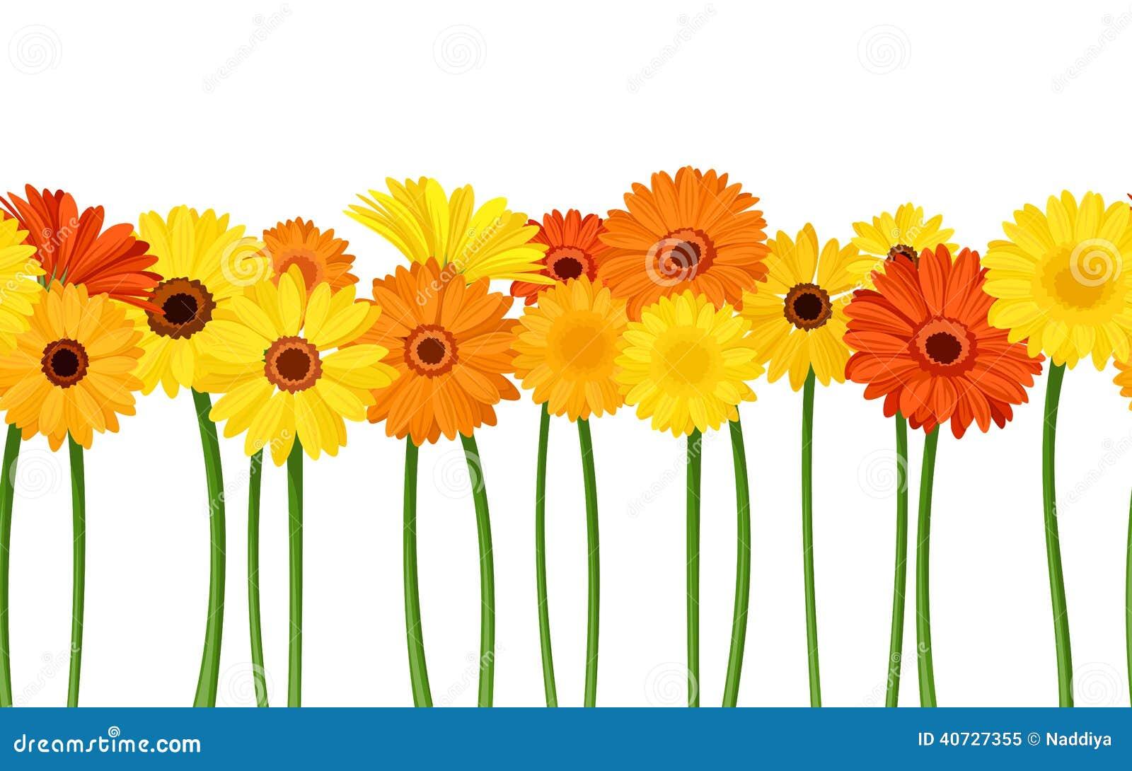 Fond sans couture horizontal avec des fleurs de gerbera Illustration de vecteur
