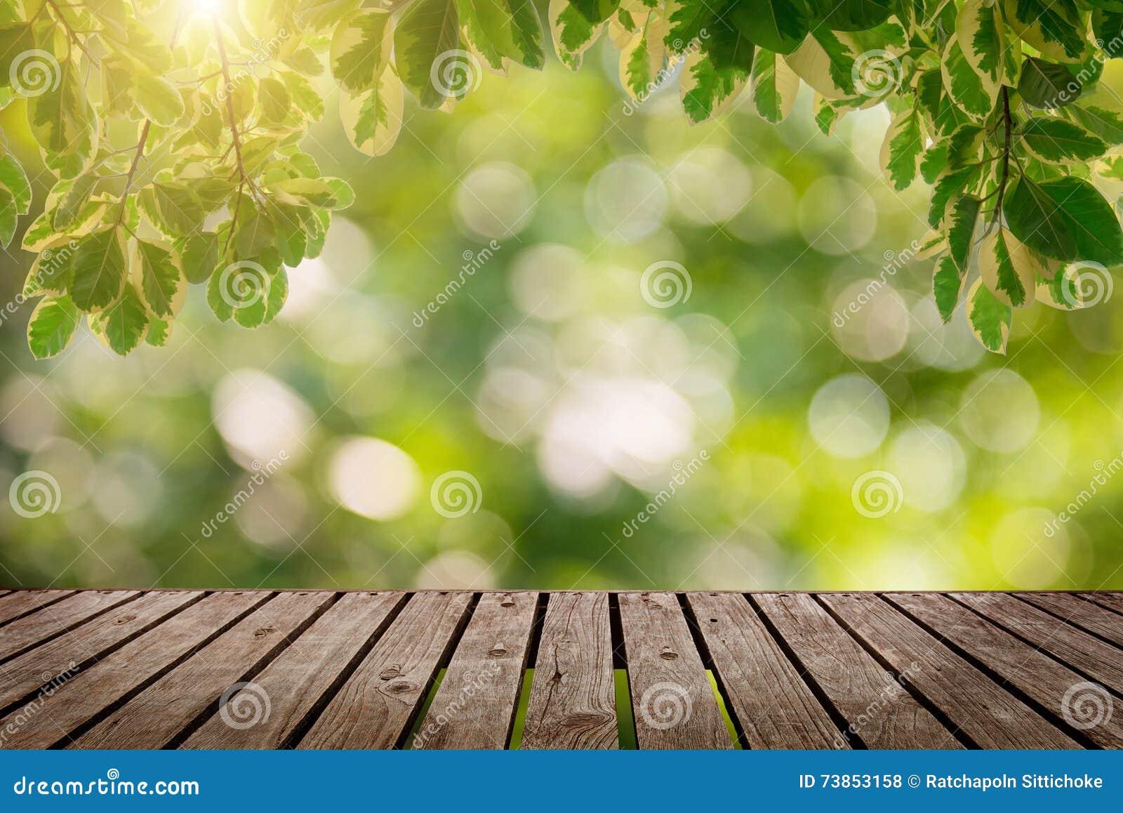 Fond simple en bois de bureau et de jardin photo stock image du