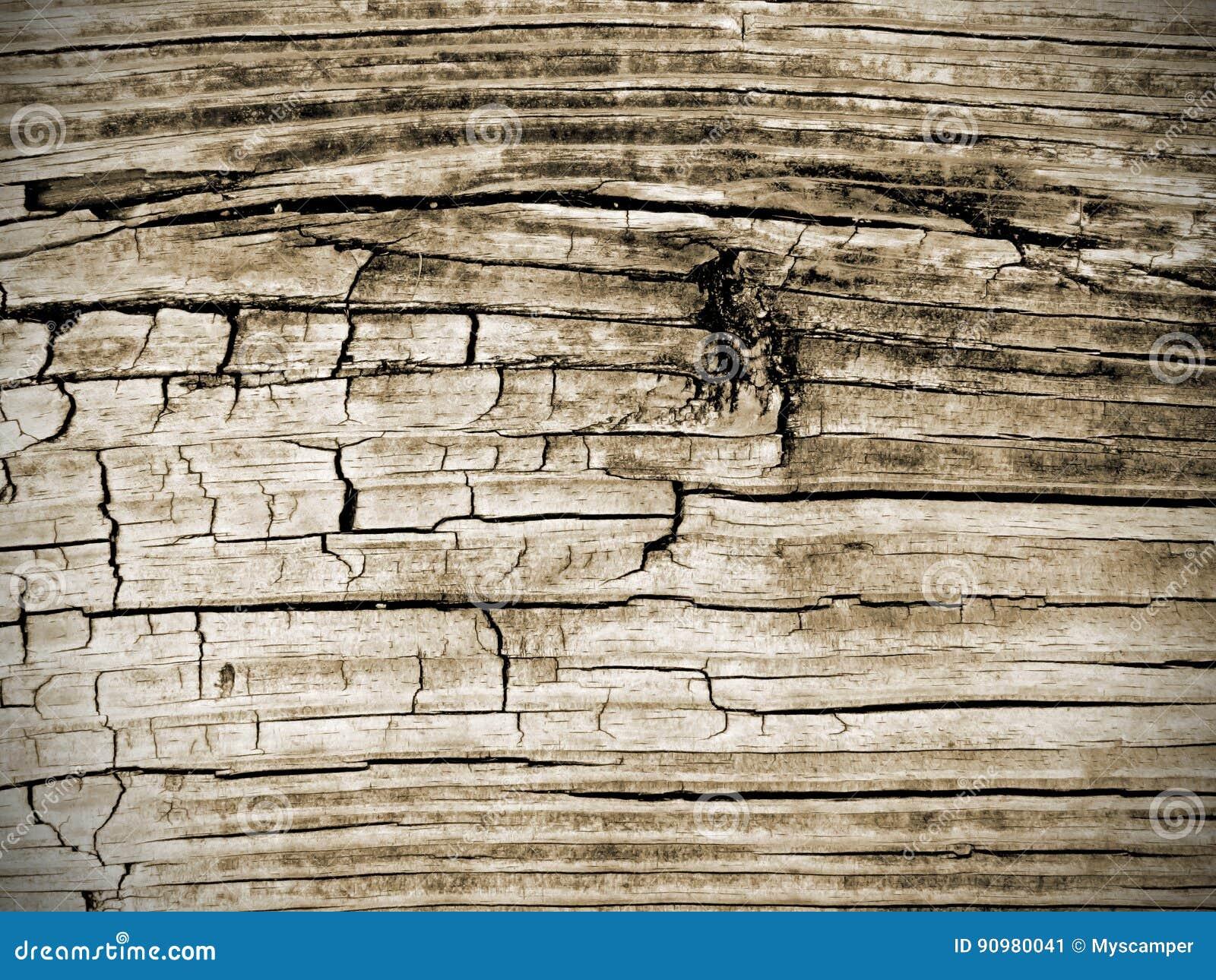 Fond texturisé de bureau en bois superficiel par les agents de