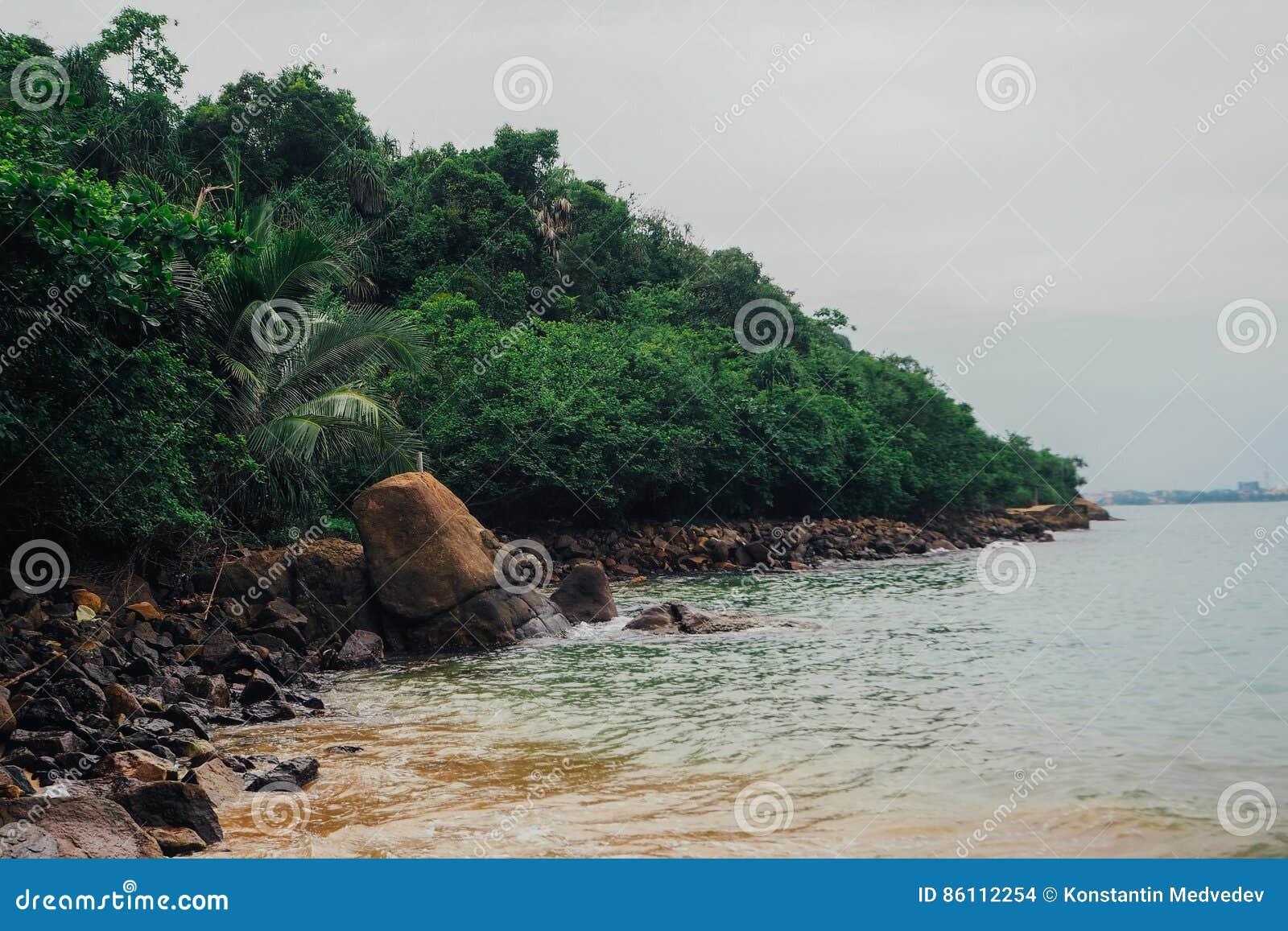 Fond tropical de vacances de vacances - plage idyllique de paradis Le Sri Lanka