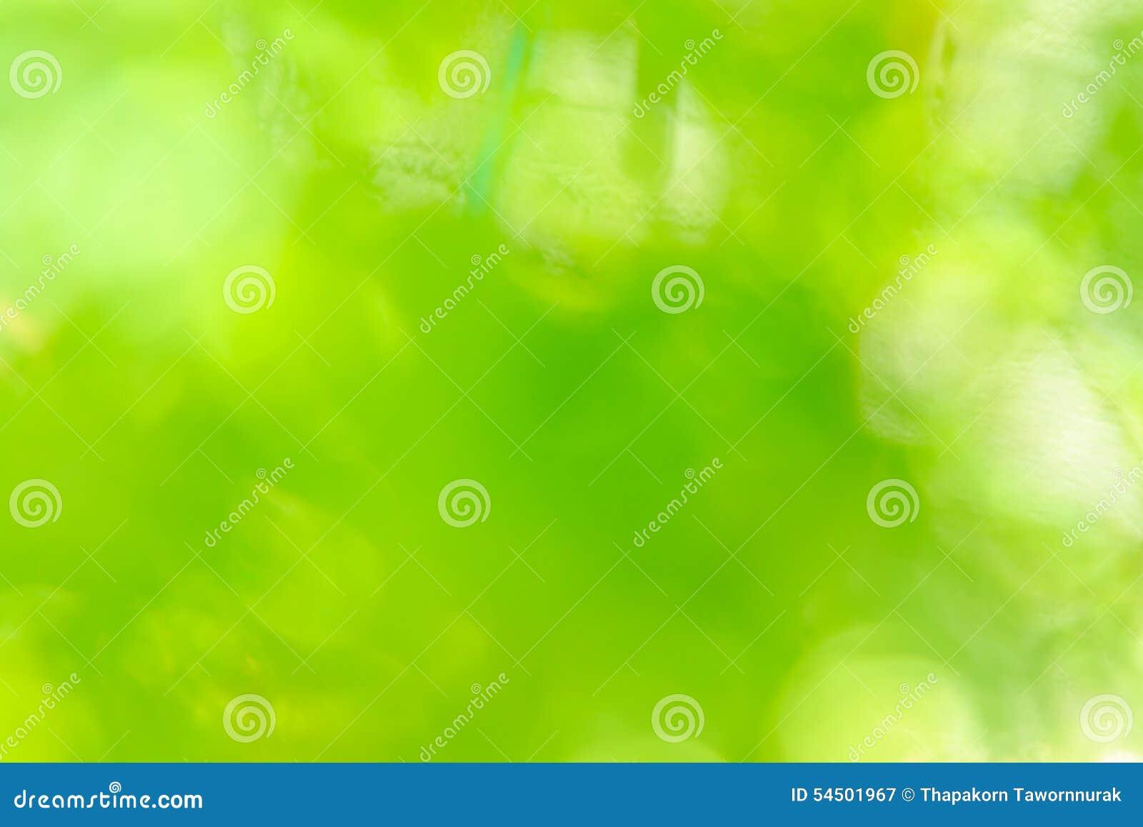 Fond vert abstrait de nature