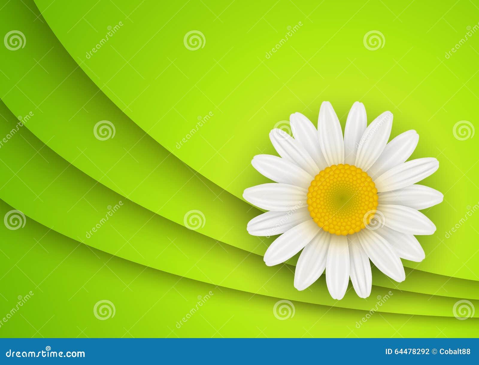fond vert de fleur illustration de vecteur image 64478292. Black Bedroom Furniture Sets. Home Design Ideas