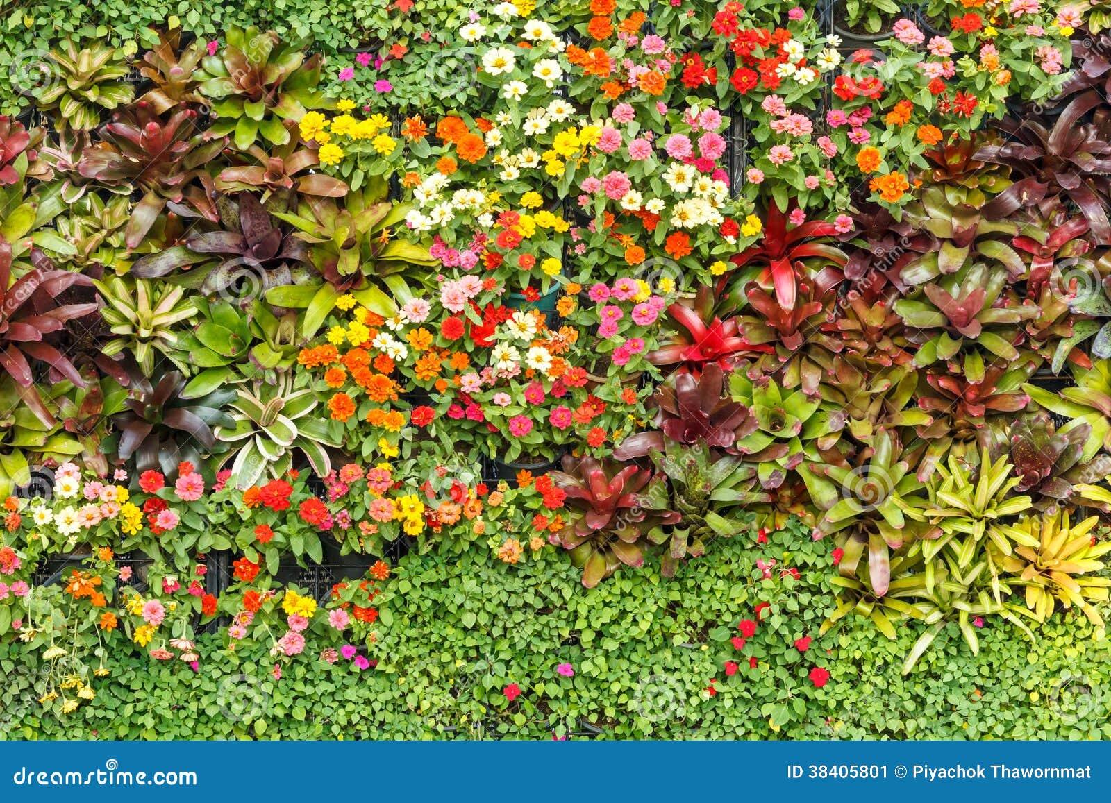 Fondo abstracto de la naturaleza, jardín de la pared