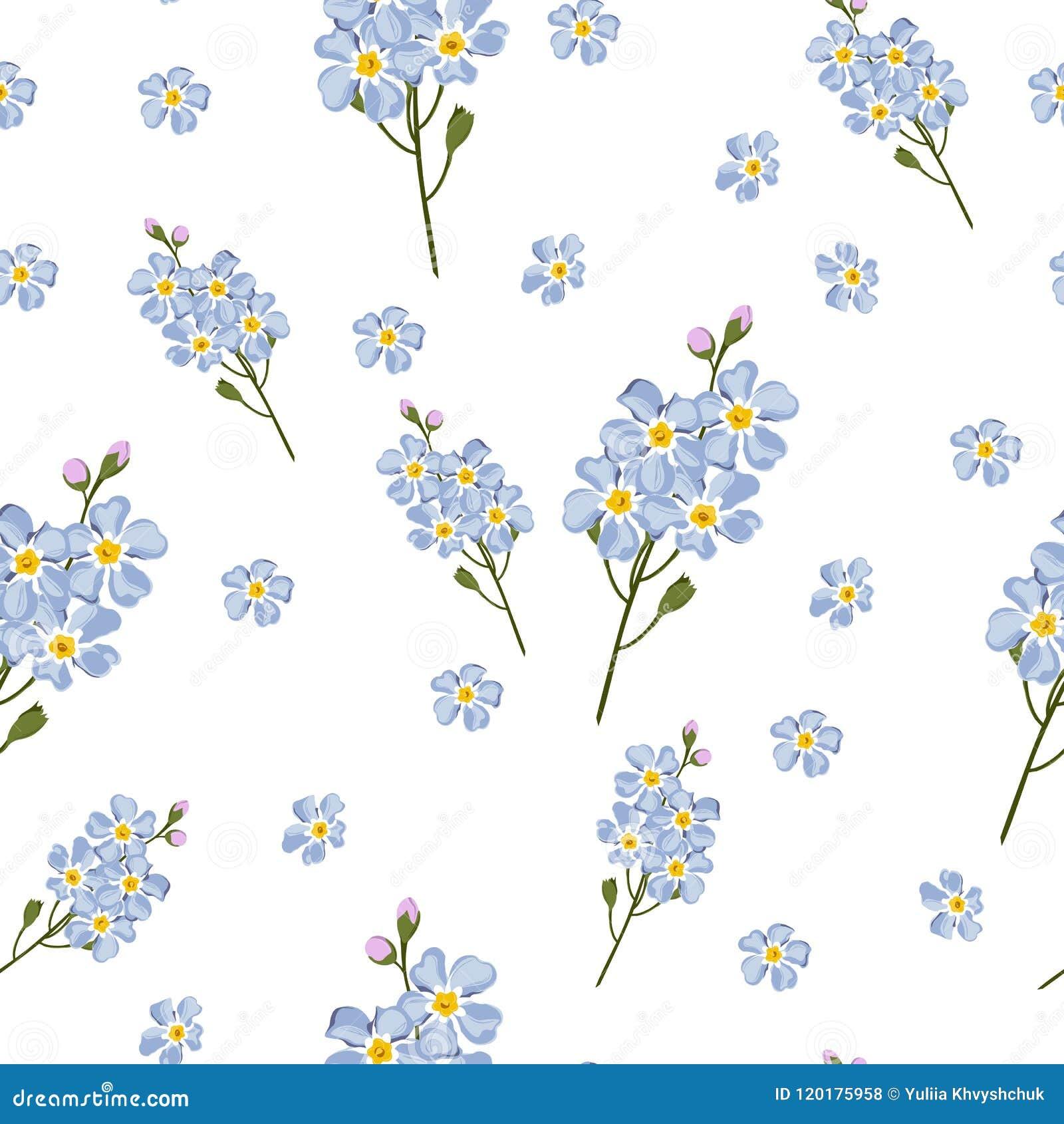 Fondo apacible inconsútil con nomeolvides del estilo de la acuarela Modelo hermoso Verano, lindo, flores del azul de cielo pequeñ