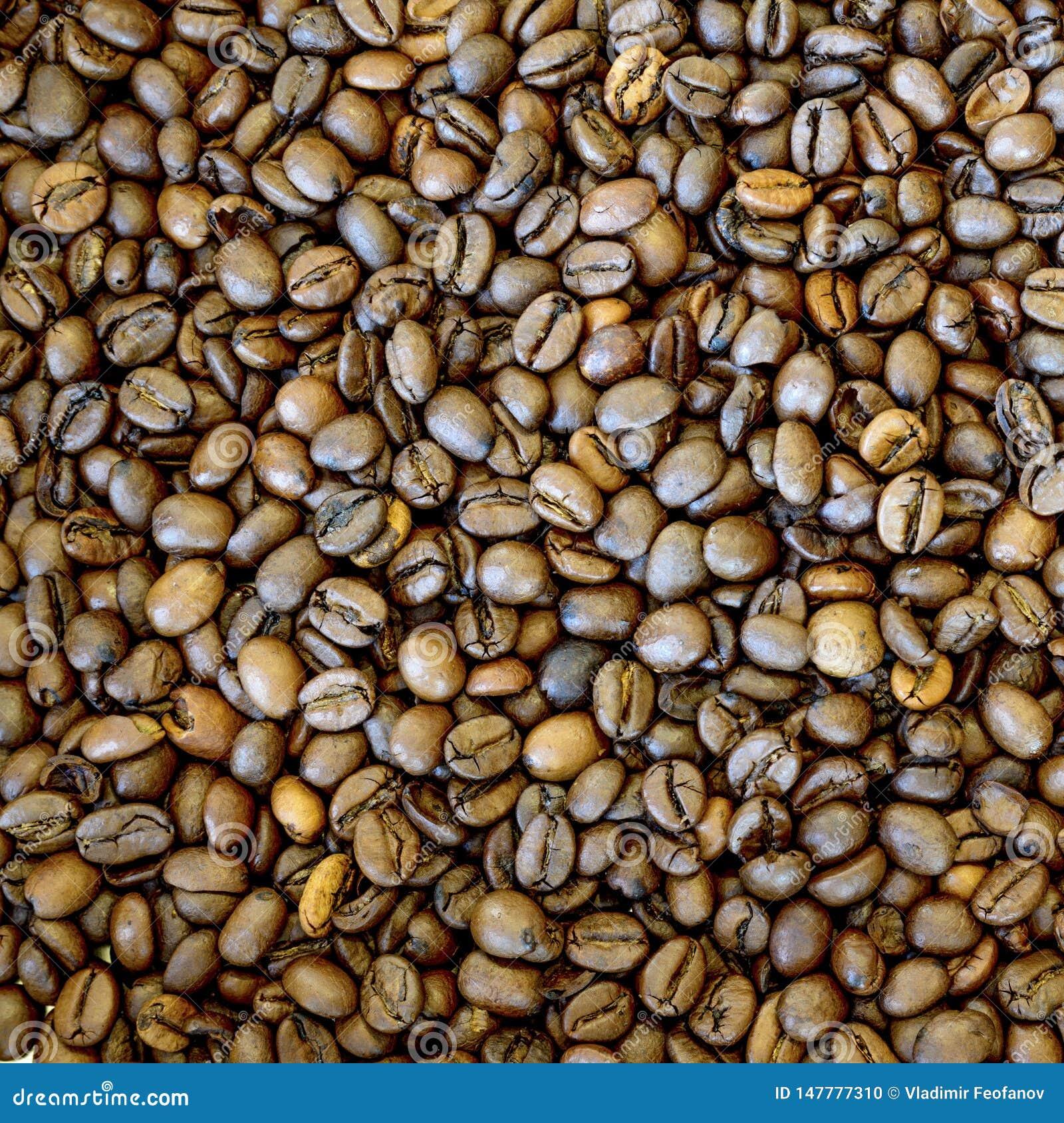Fondo asado de los granos de caf?