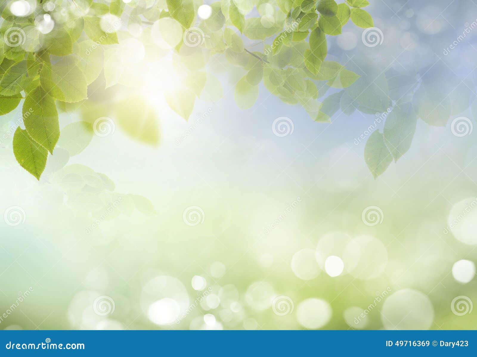 Fondo astratto della natura di stagione estiva o della primavera