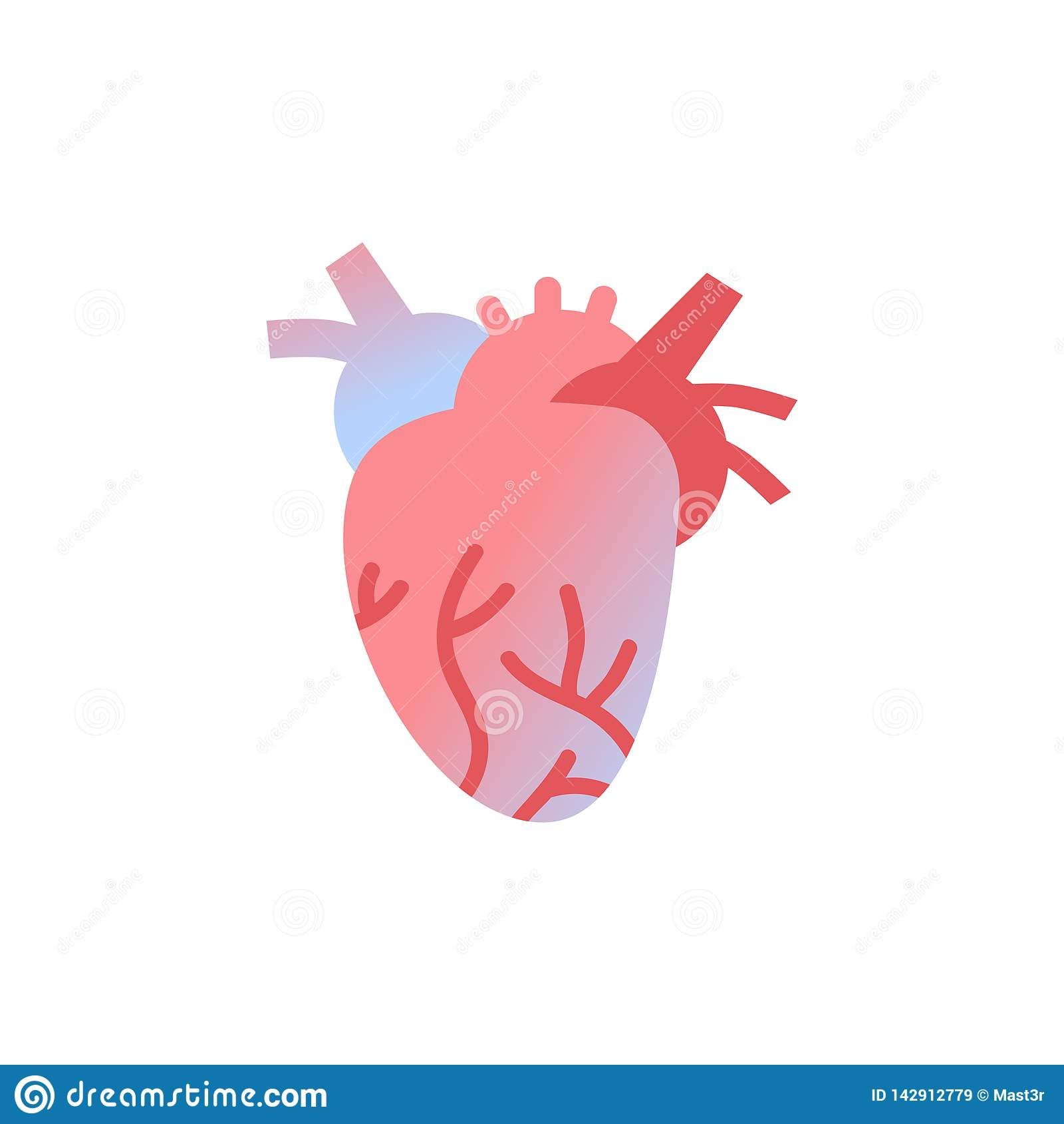 Fondo bianco del cuore dell icona del corpo umano dell organo di anatomia di concetto medico anatomico di sanità