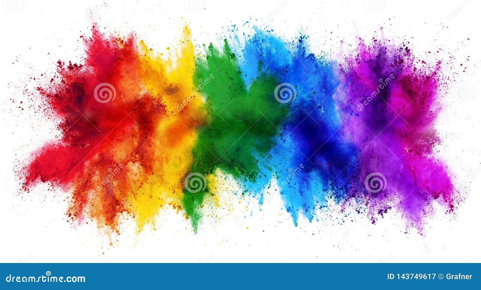 Fondo bianco di panorama isolato esplosione variopinta della polvere di colore della pittura di holi dell arcobaleno ampio