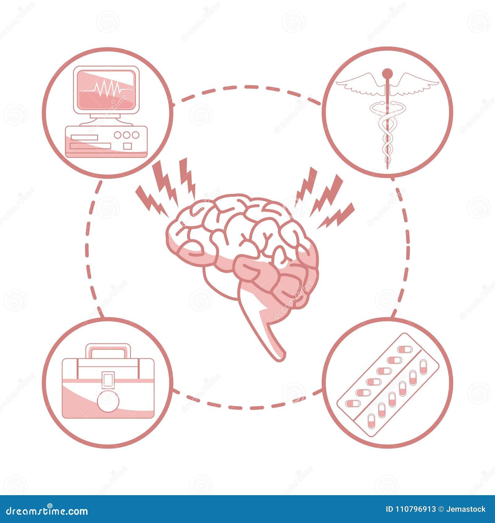 Fondo Blanco Con Las Secciones Del Color Rojo Del órgano Del Cerebro ...