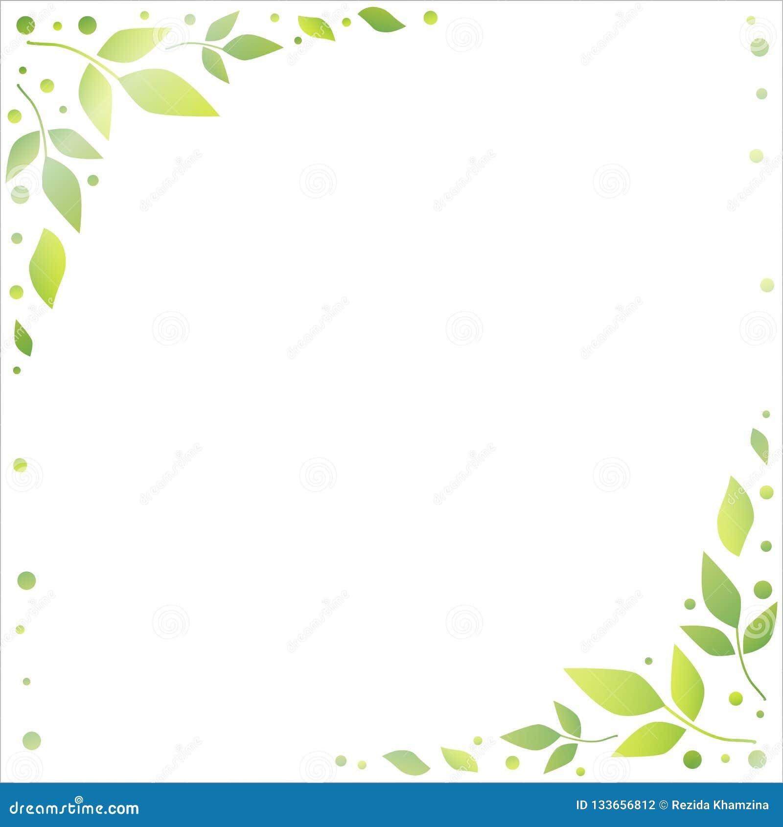 Fondo Blanco Con Los Bordes Decorativos De Hojas Y De Puntos