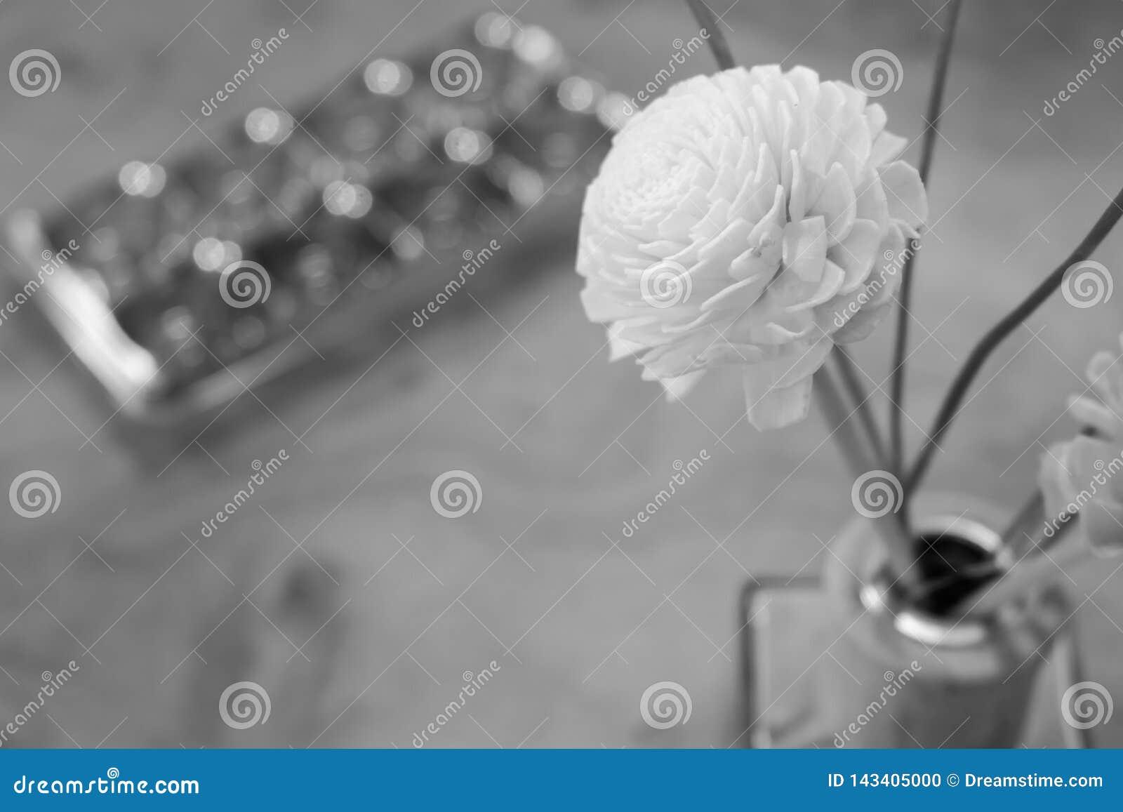 Fondo blanco y negro de la flor