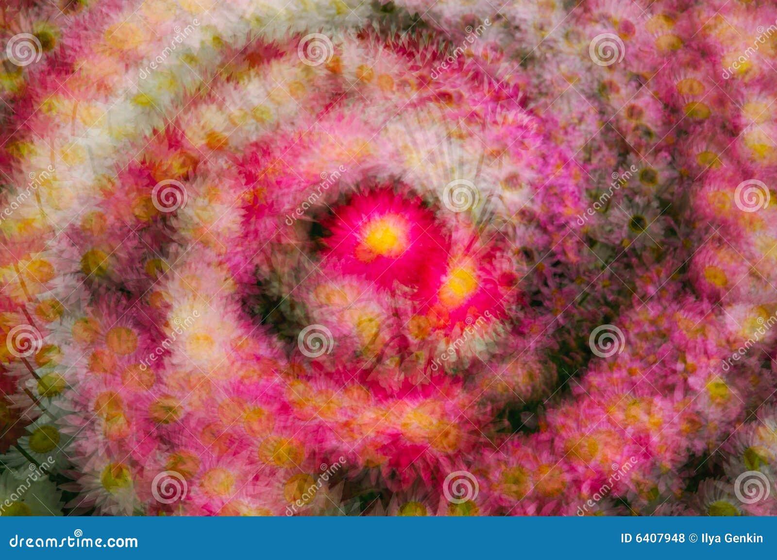 Fondo colorido abstracto de la flor