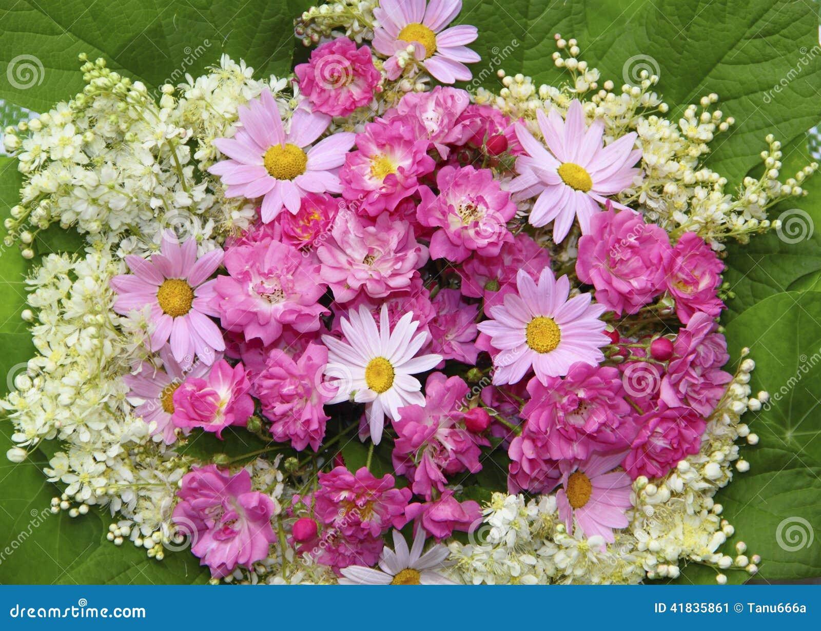 Fondo Colorido De La Flor Con Las Rosas Rosadas ...