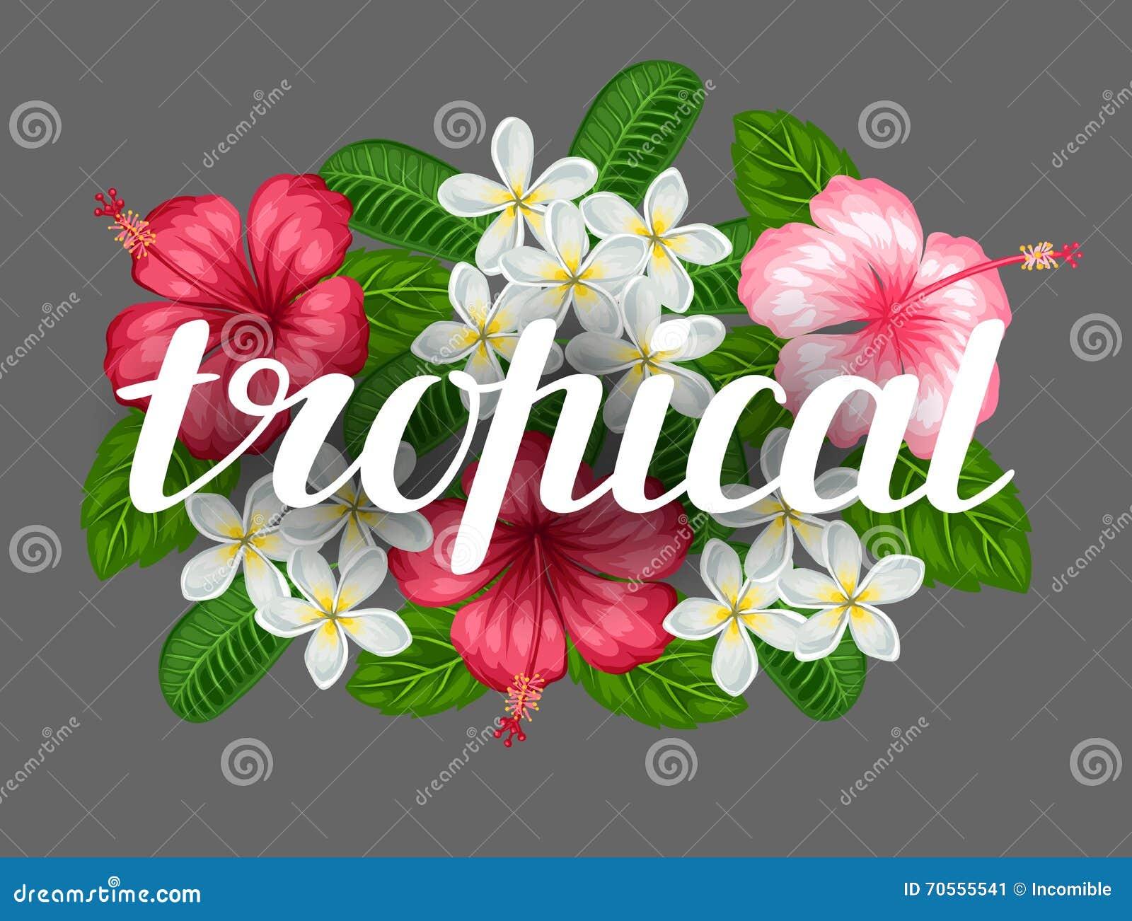 Famoso Uñas Diseños De Flores Para Principiantes Regalo - Ideas de ...