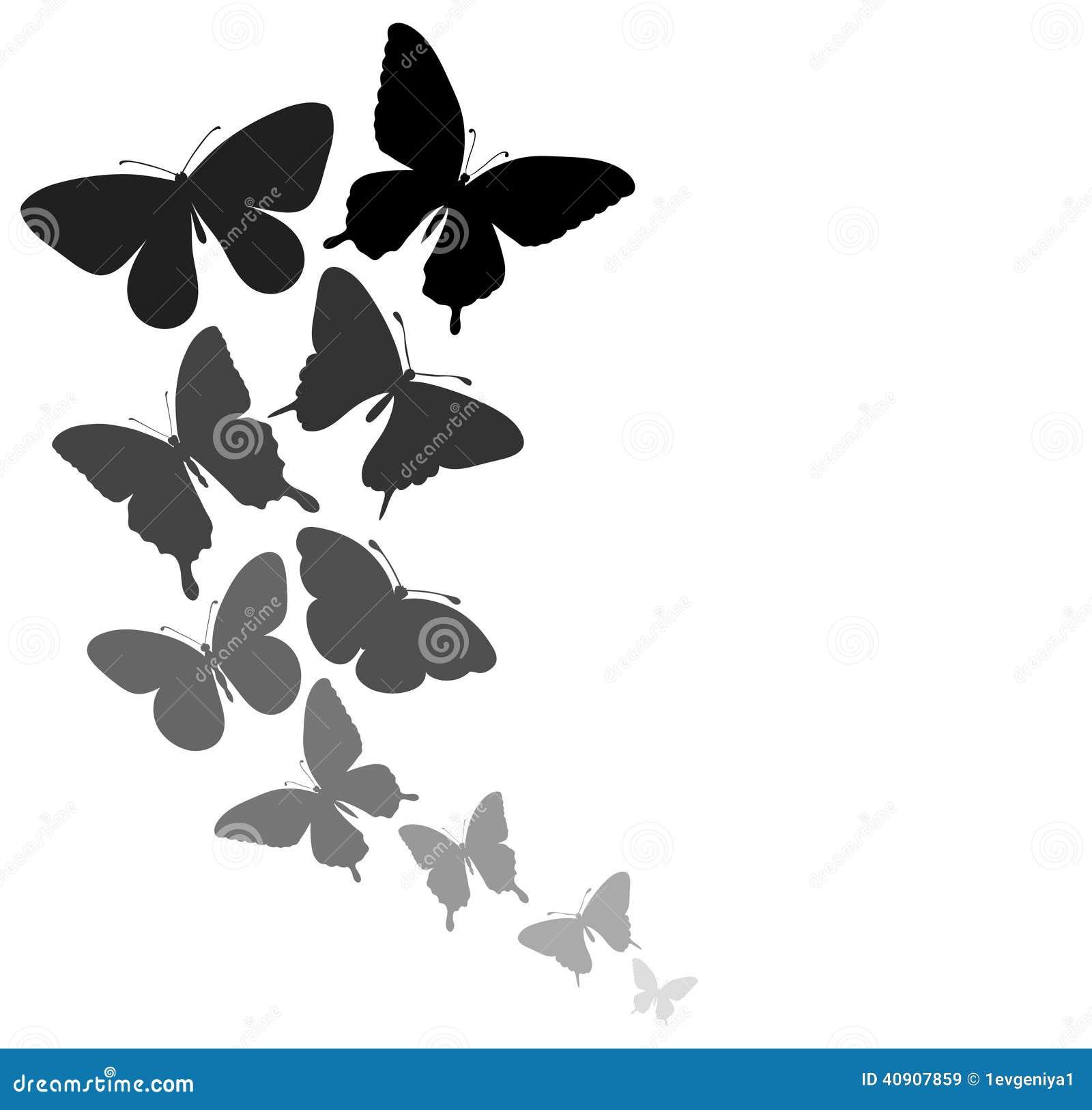 Fondo Con Una Frontera De Volar De Las Mariposas Stock de ...