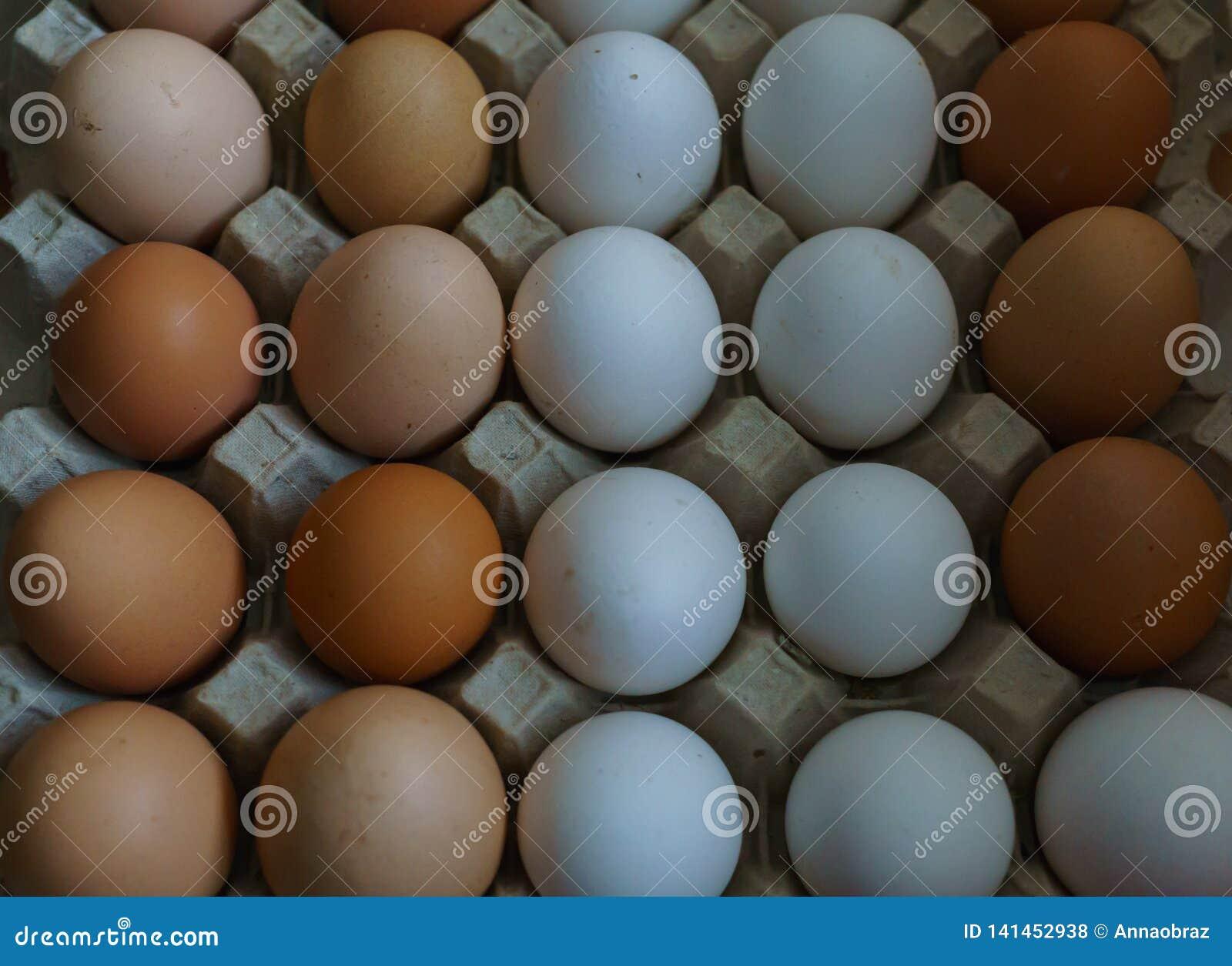Fondo dalle uova domestiche bianche e marroni del pollo Alimento biologico