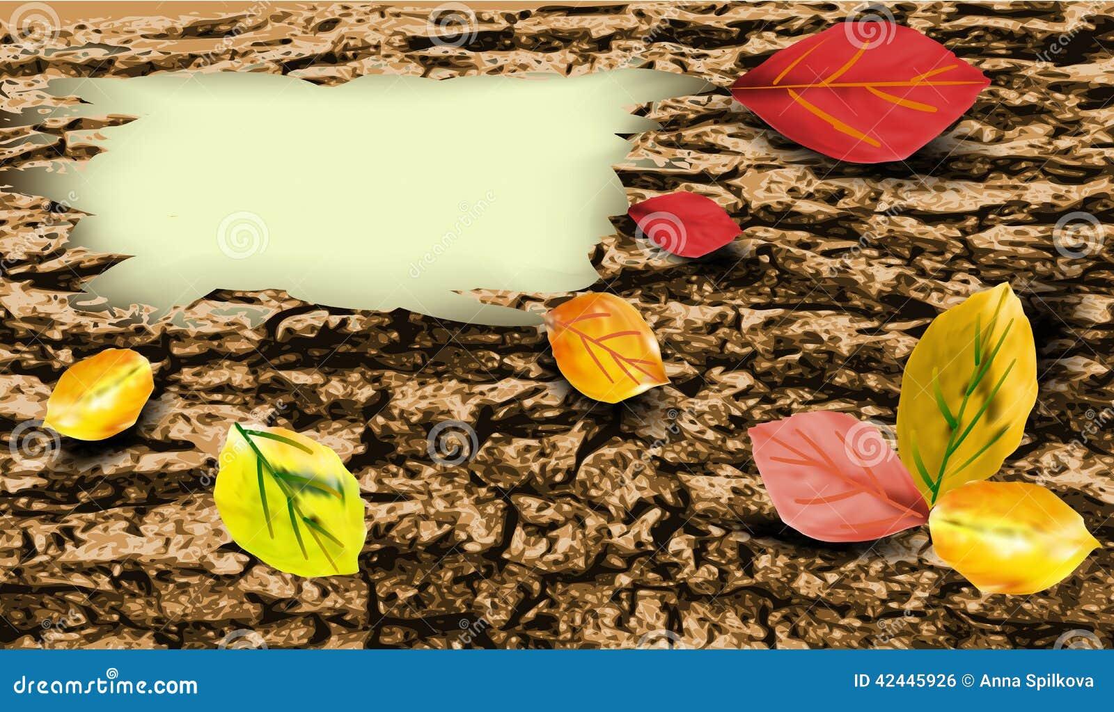 Fondo de la corteza de árbol con licencia de otoño colorida