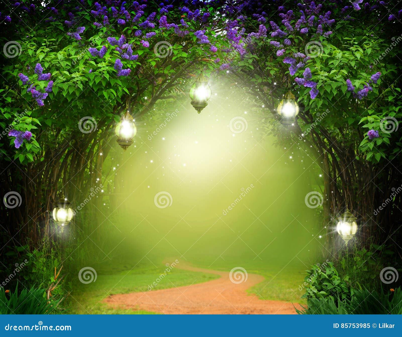 Fondo de la fantasía Bosque mágico con el camino