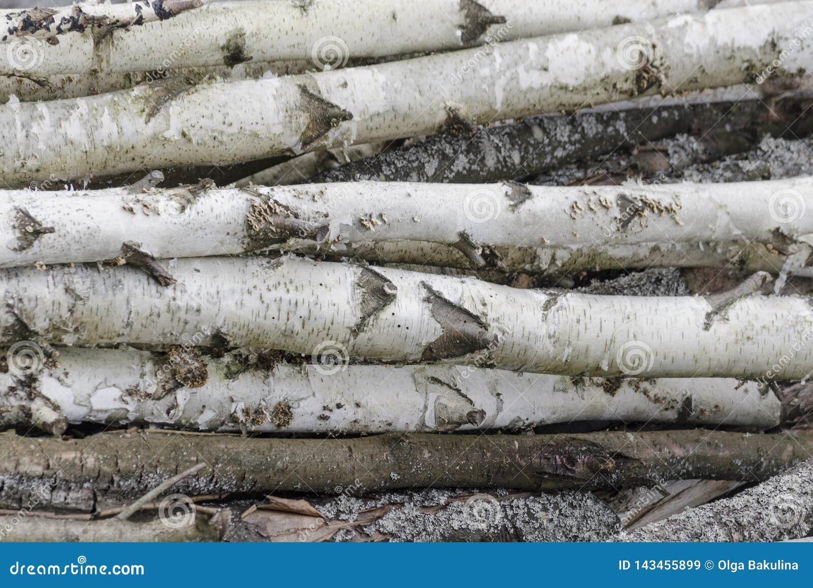 Fondo de la madera de madera de las pilas La pila de madera registra almacenamiento Las sierras cortaron los registros de madera