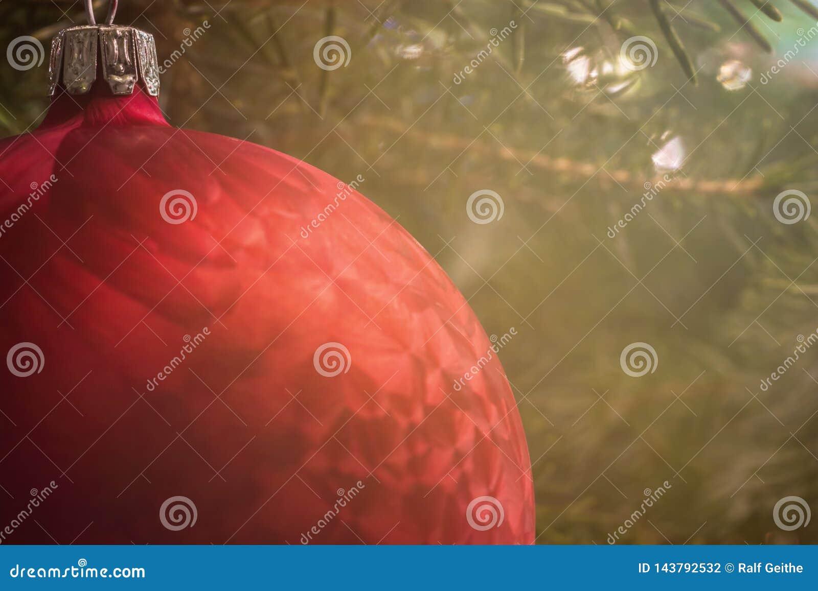 Fondo de la Navidad con una chuchería roja y el árbol de navidad detrás de él