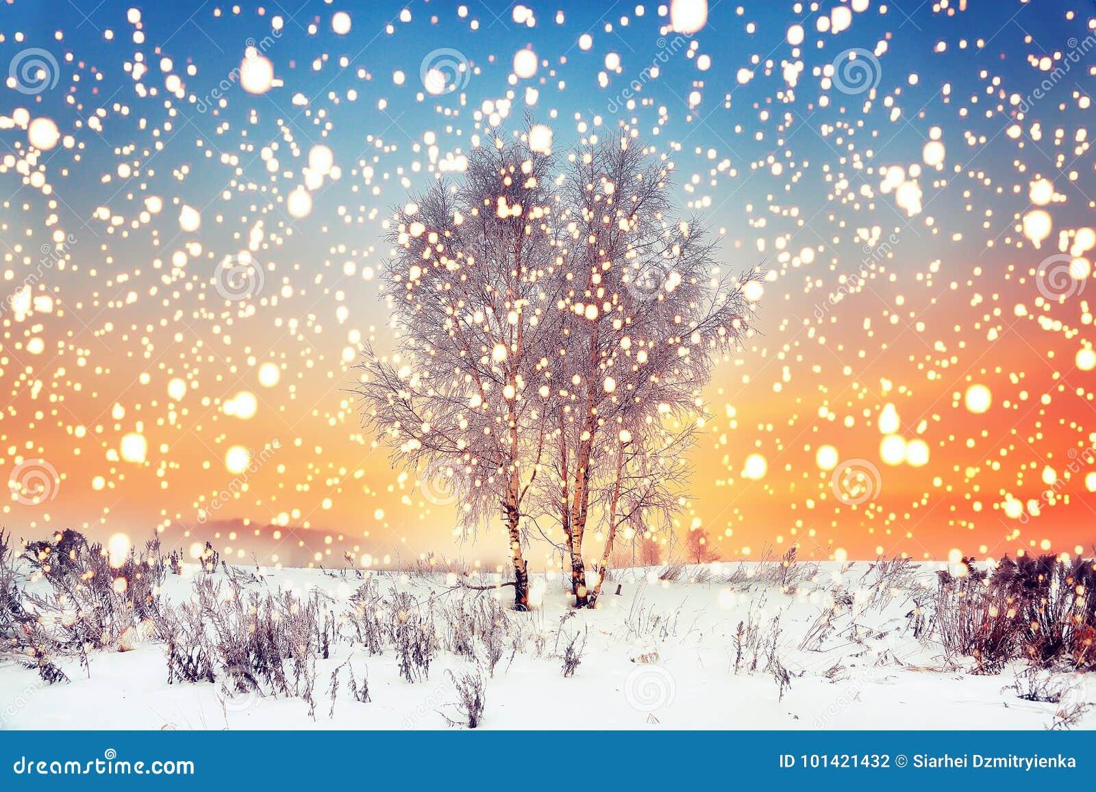 Fondo de la Navidad del invierno Los copos de nieve mágicos caen en prado nevoso con los árboles Paisaje de Navidad