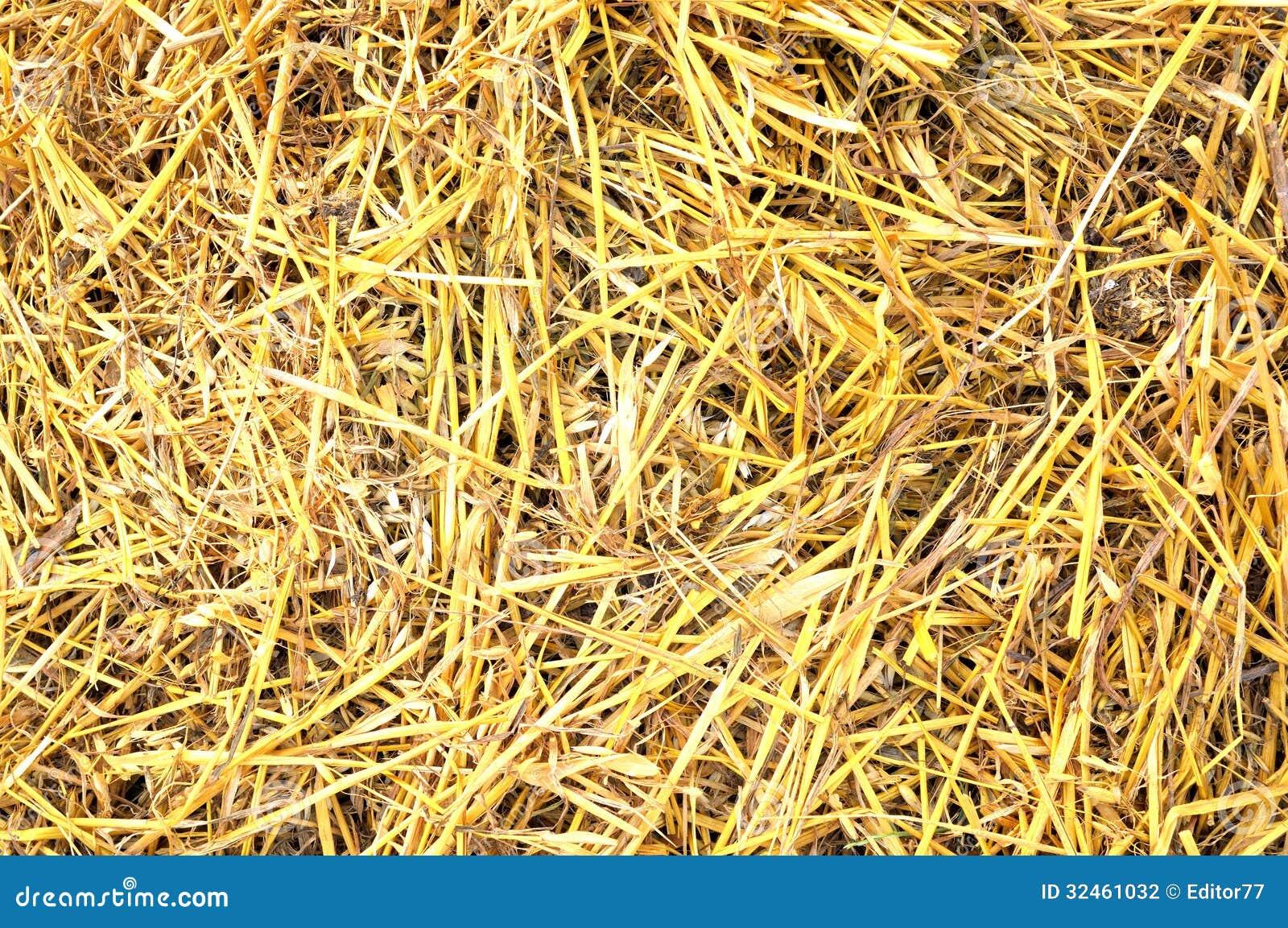 Fondo De La Paja Fotografía de archivo - Imagen: 32461032