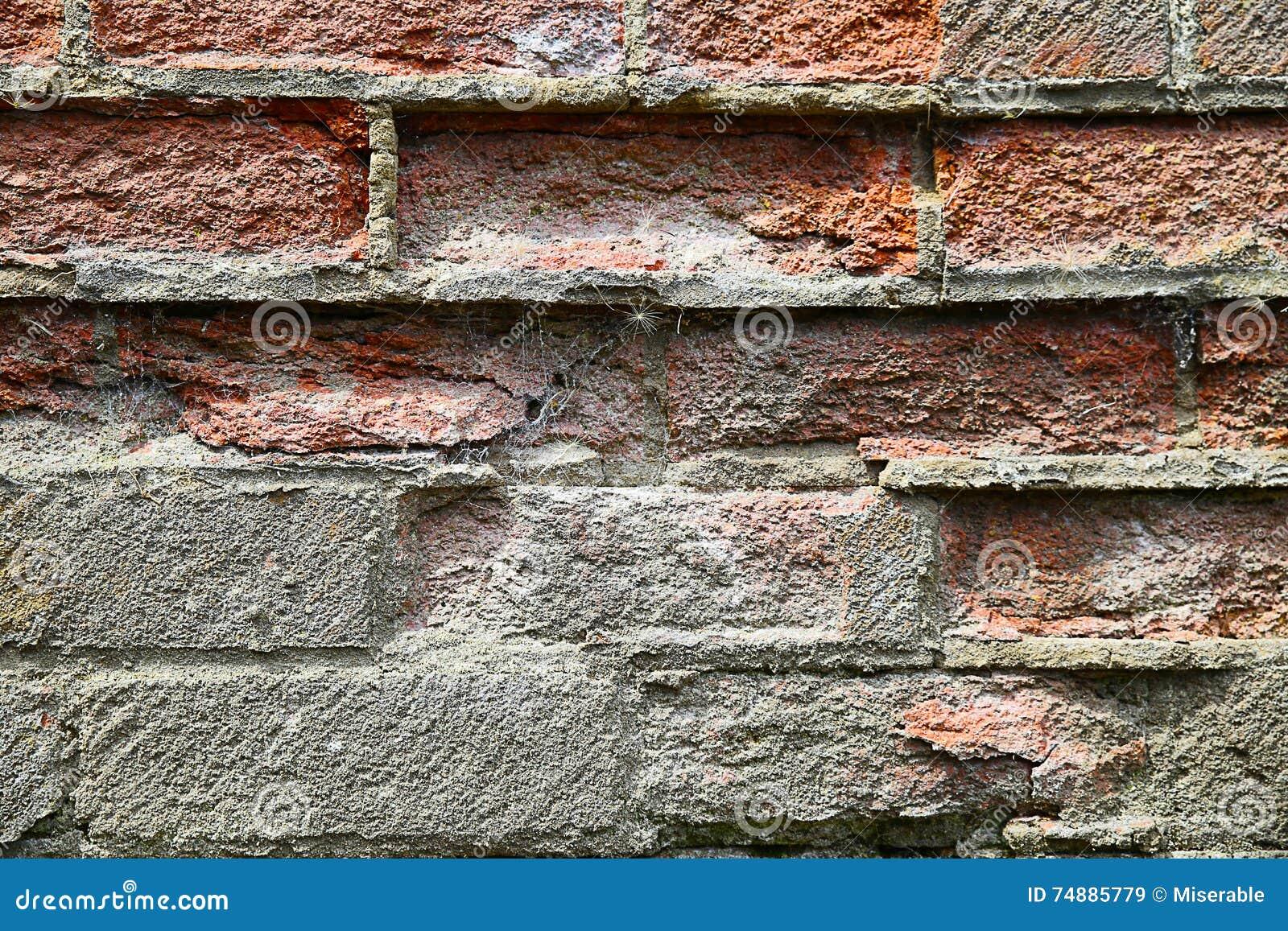 Fondo de la pared