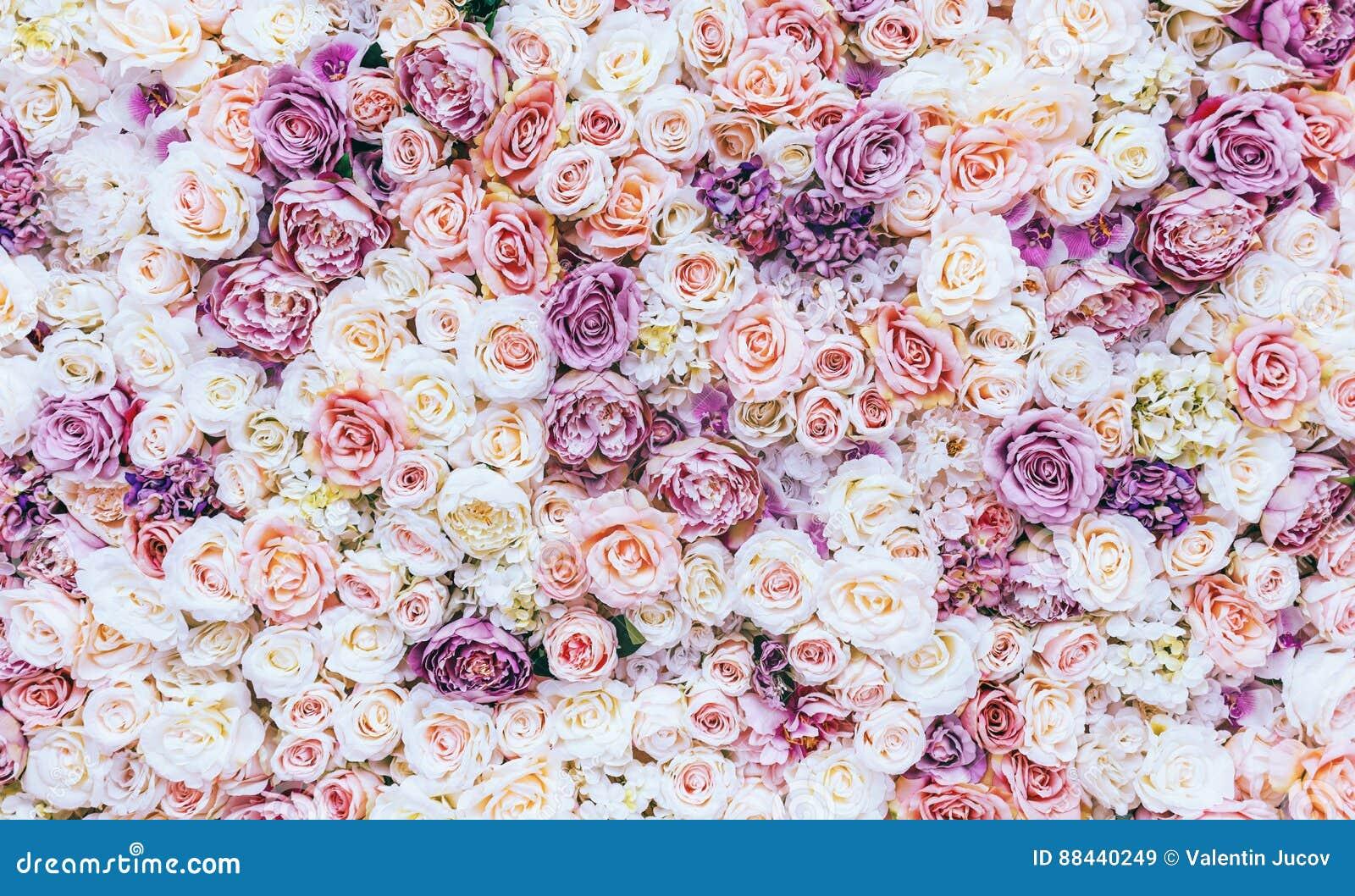 Fondo de la pared de las flores con sorprender las rosas rojas y blancas, casandose la decoración, hecha a mano