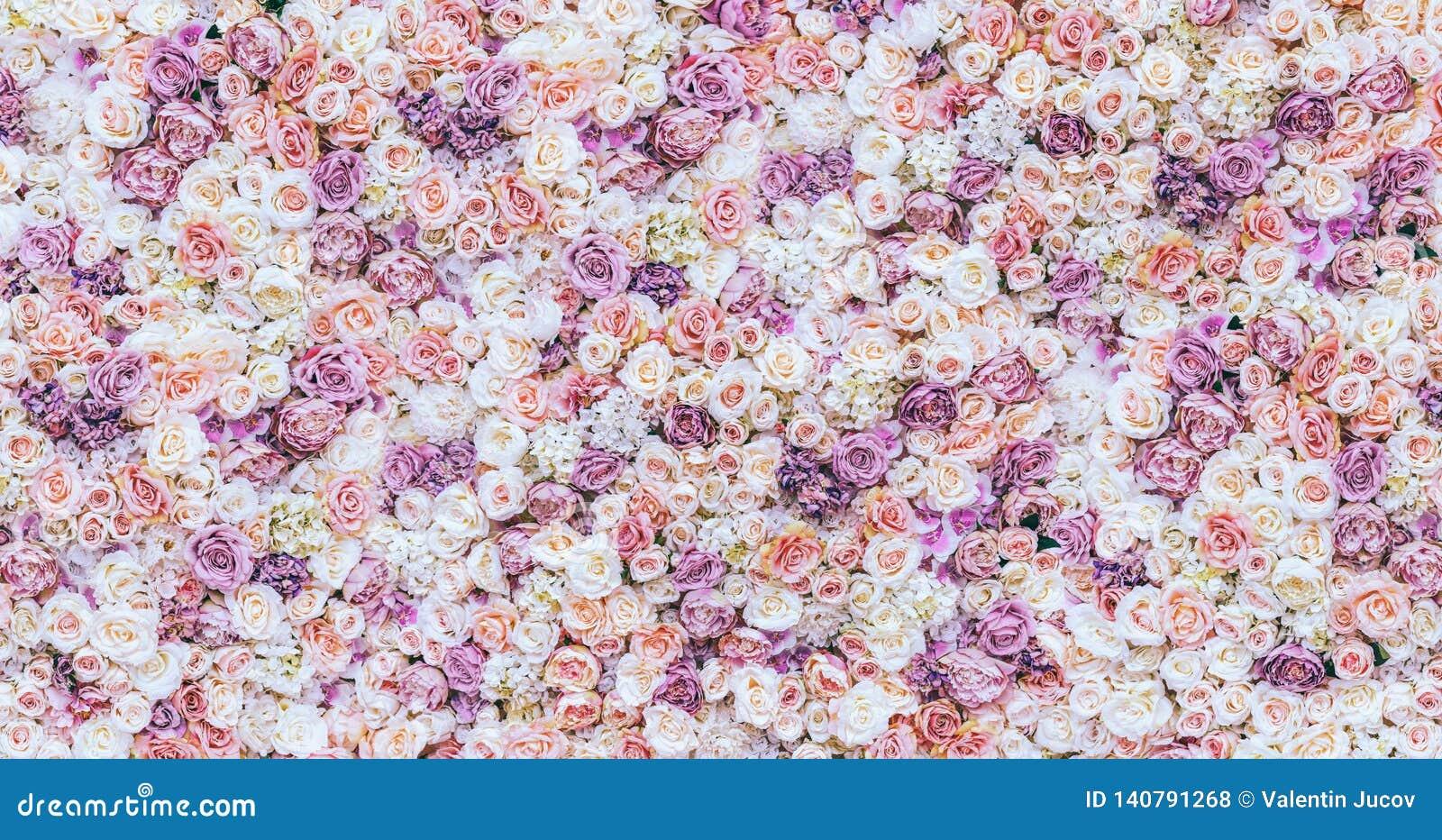 Fondo de la pared de las flores con sorprender las rosas rojas y blancas, casandose la decoración, hecha a mano tono