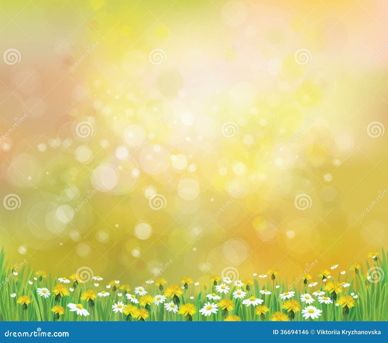 Fondo de la primavera de la naturaleza del vector con las manzanillas