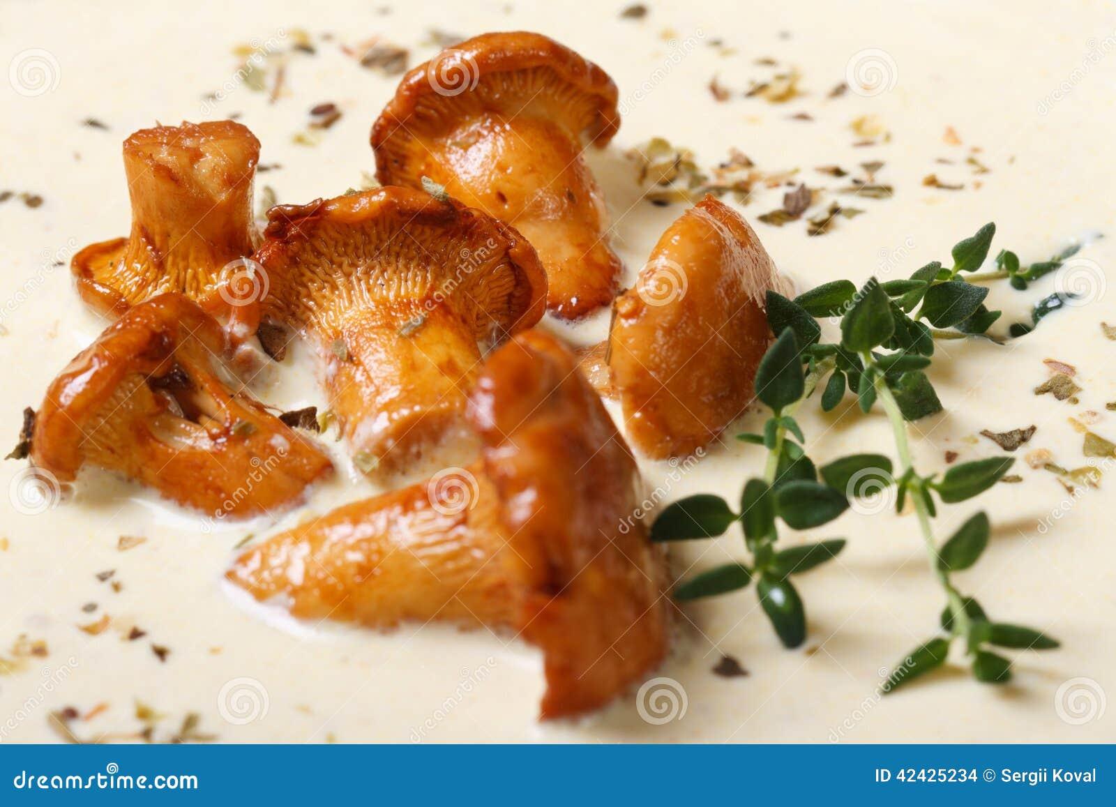 Fondo de la sopa poner crema con los hanterelles y el tomillo