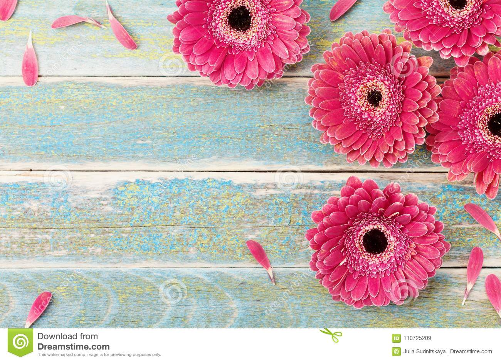 Fondo de la tarjeta de felicitación de la flor de la margarita del Gerbera para el día de la madre o de la mujer Estilo de la ven