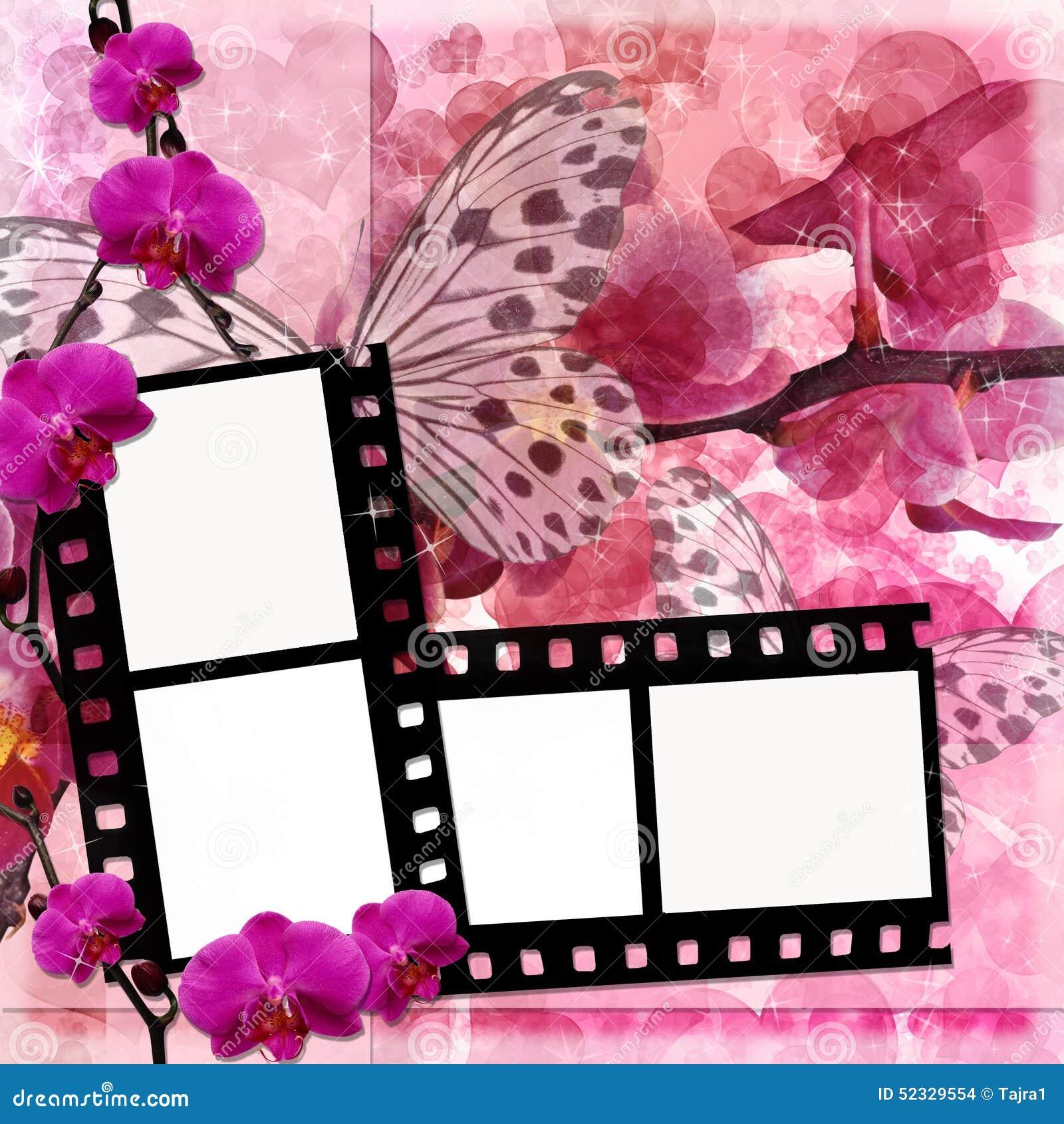 Fondo de las flores de las mariposas y de las orquídeas con el marco de película (1