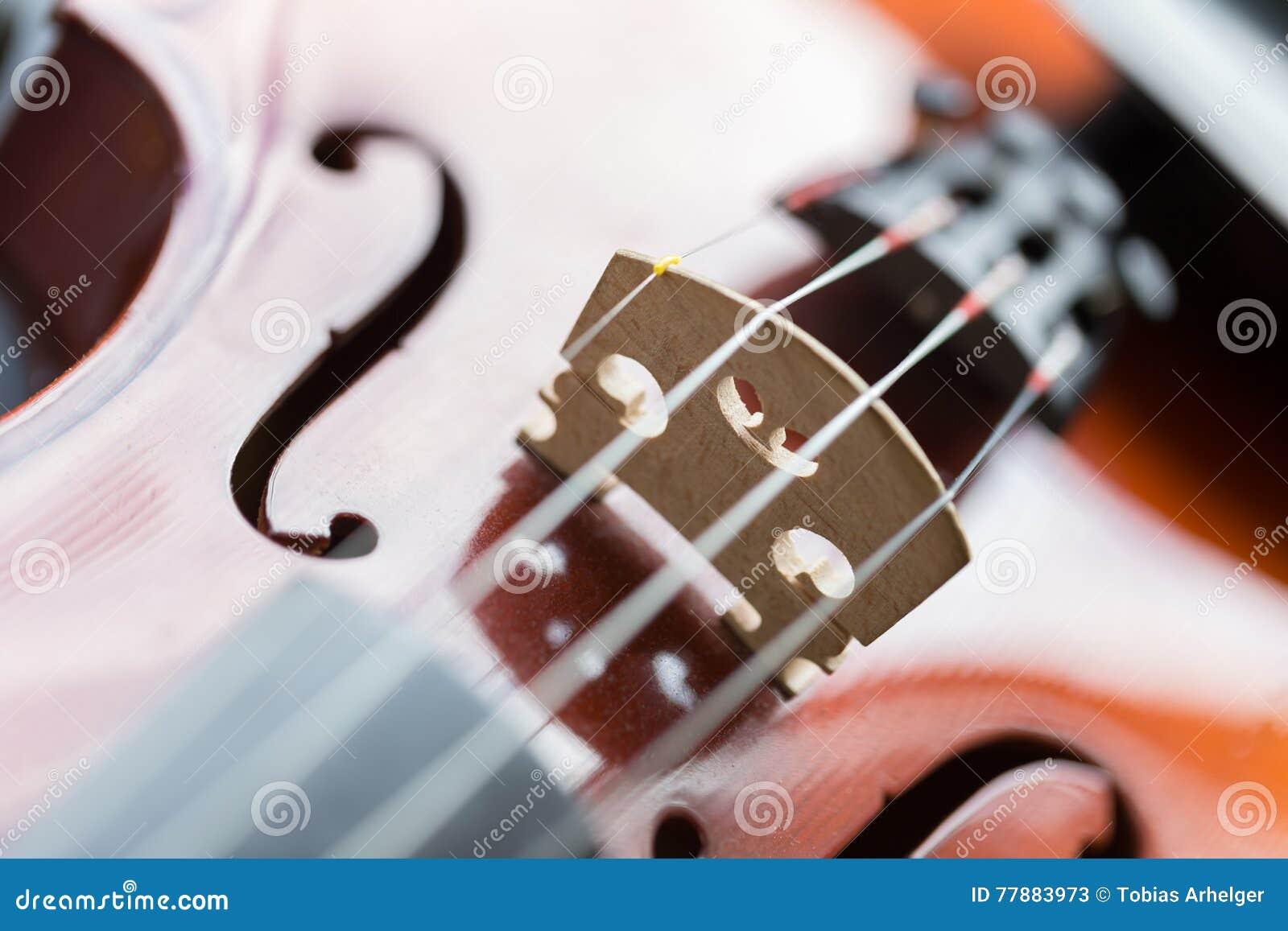 Fondo De Los Violines Foto de archivo