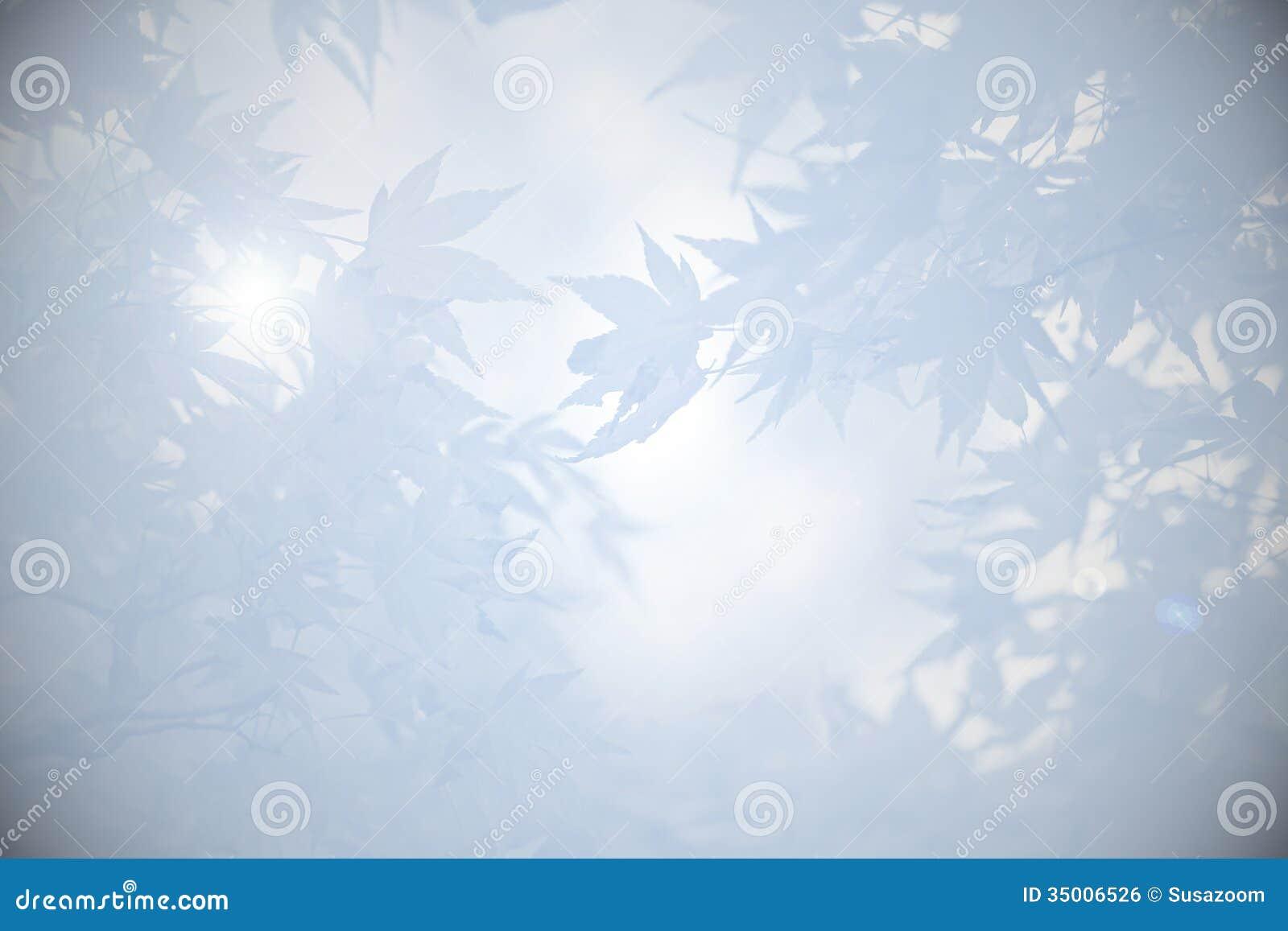 Fondo de luto con las hojas en sombras del gris