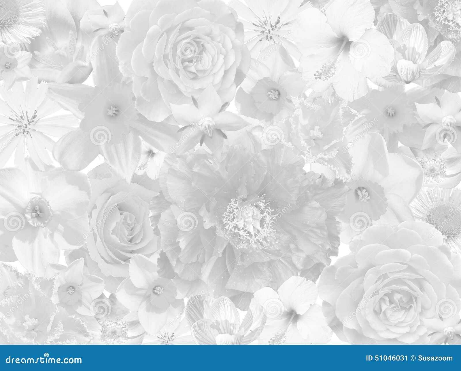 Fondo de luto floral