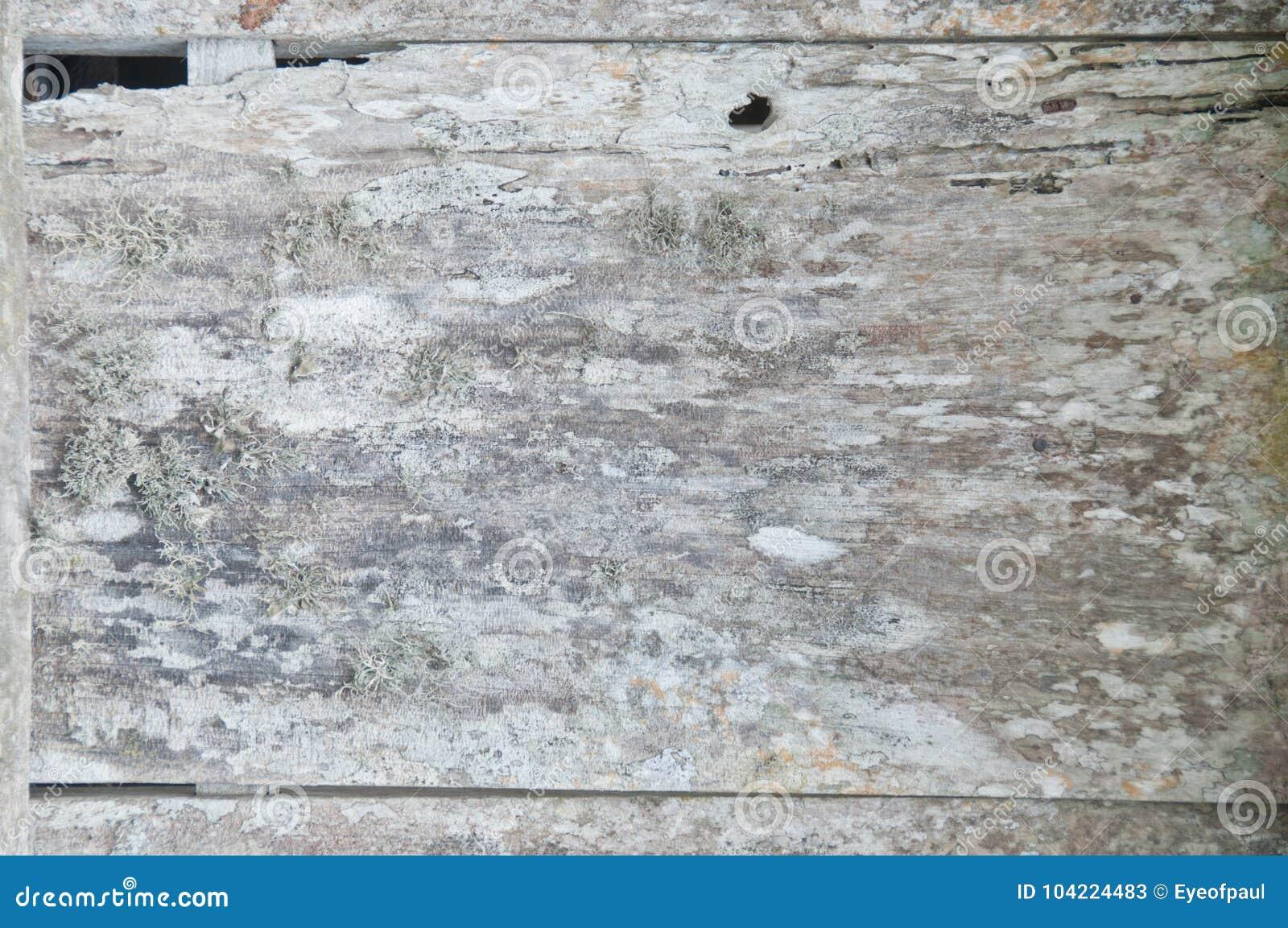 Fondo de madera defectuoso rústico del piso