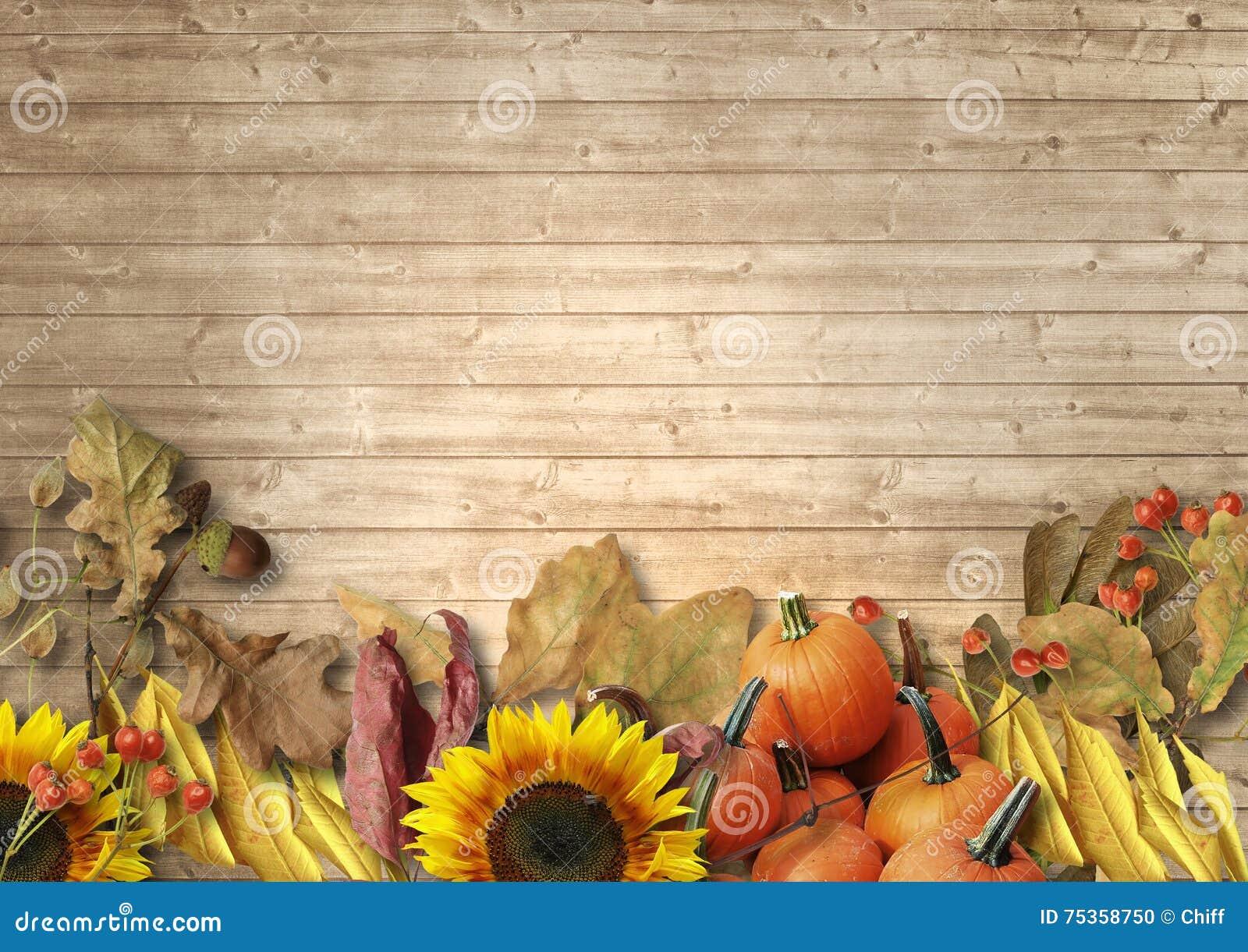 Fondo de madera del vintage con las hojas de otoño, calabazas, sunflowe