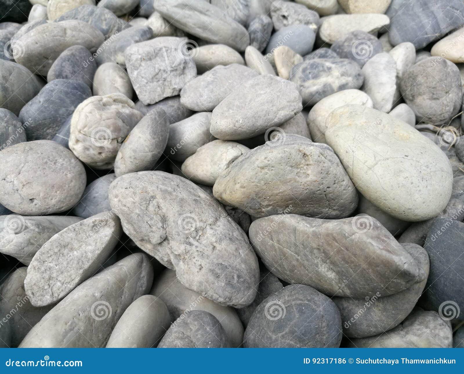 Fondo de piedra del guijarro guijarro gris blanco de la for Piedra de rio blanca precio