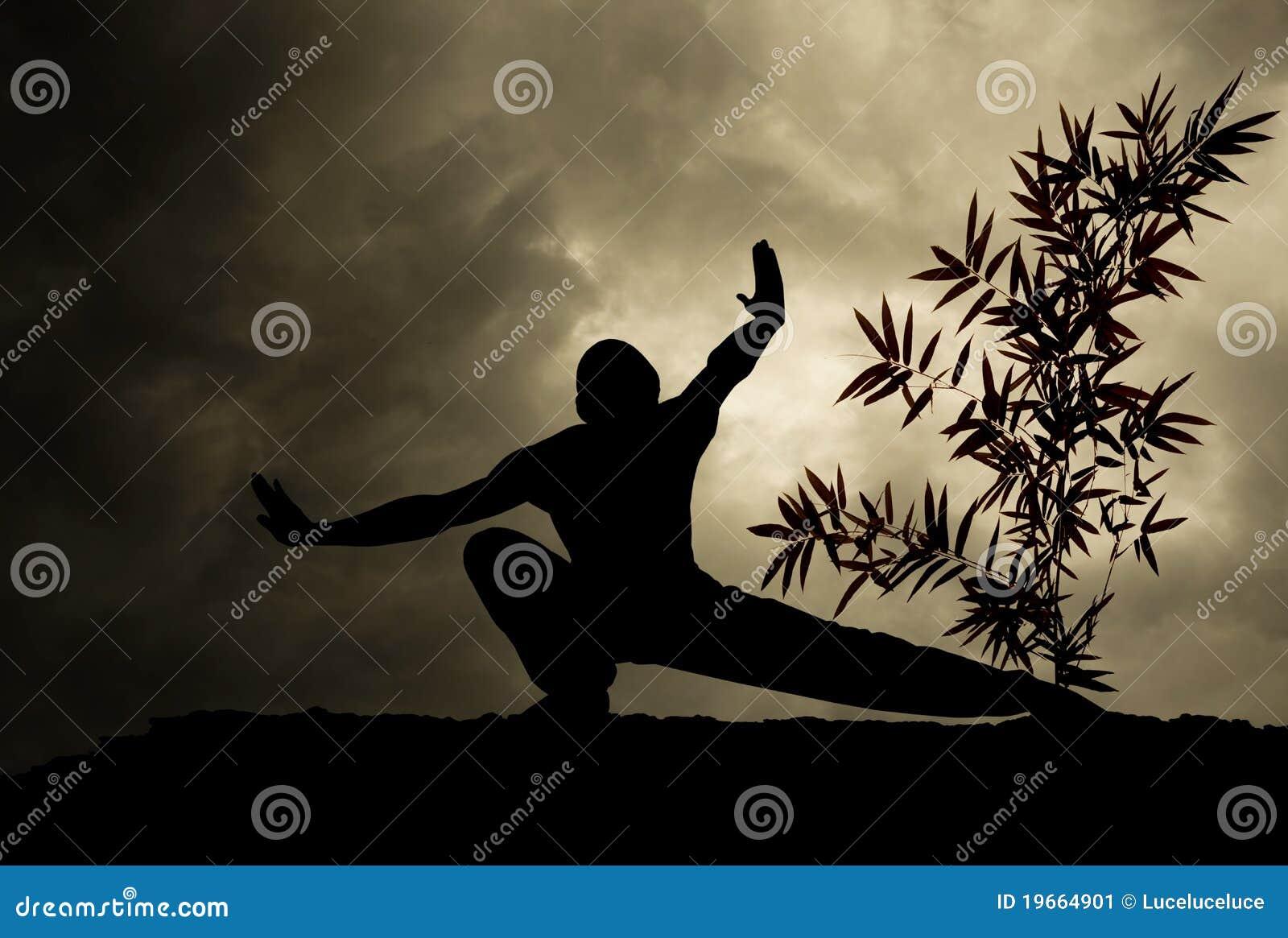 Fondo del arte marcial de Kung Fu