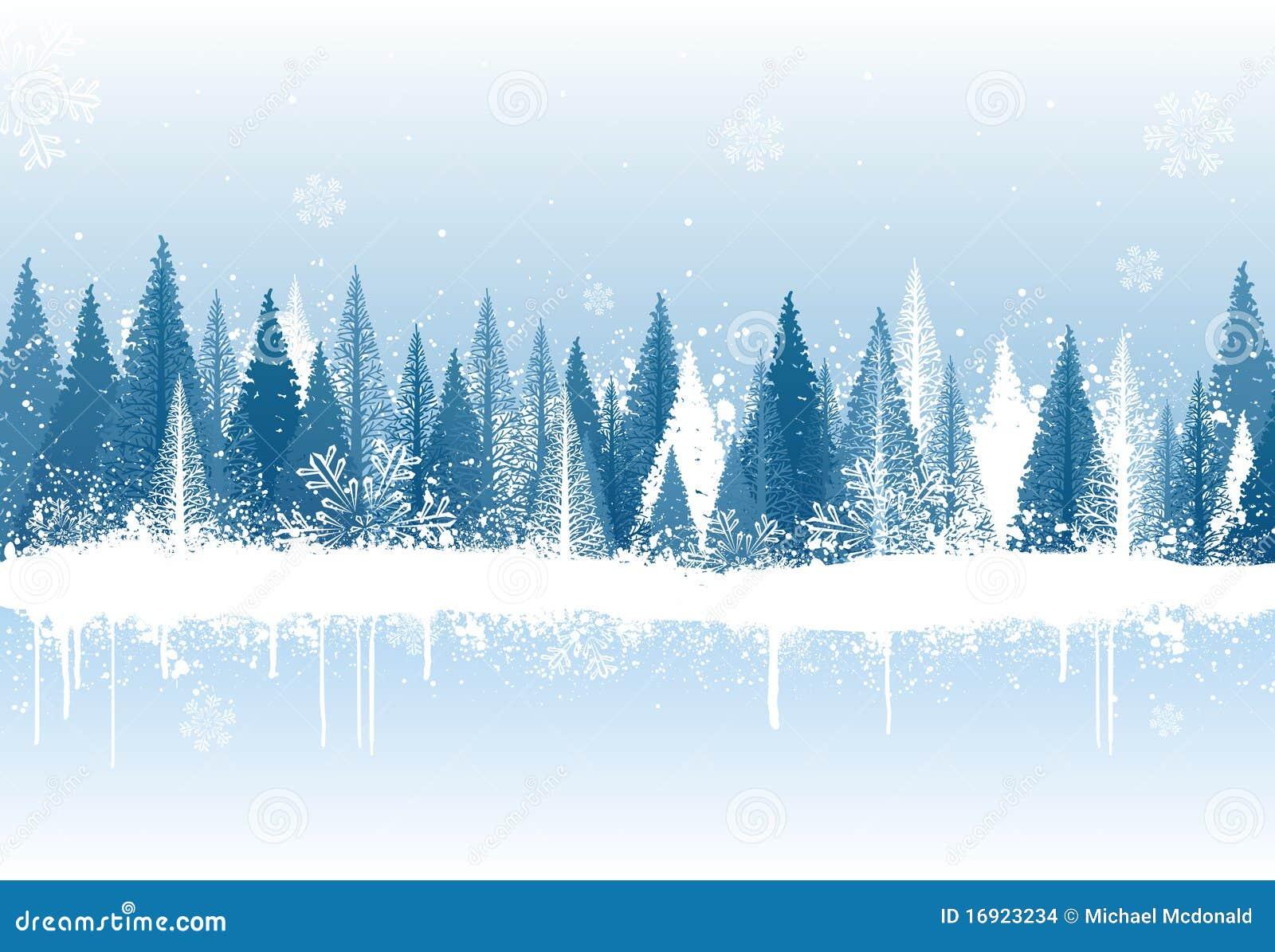 Fondo del bosque del invierno