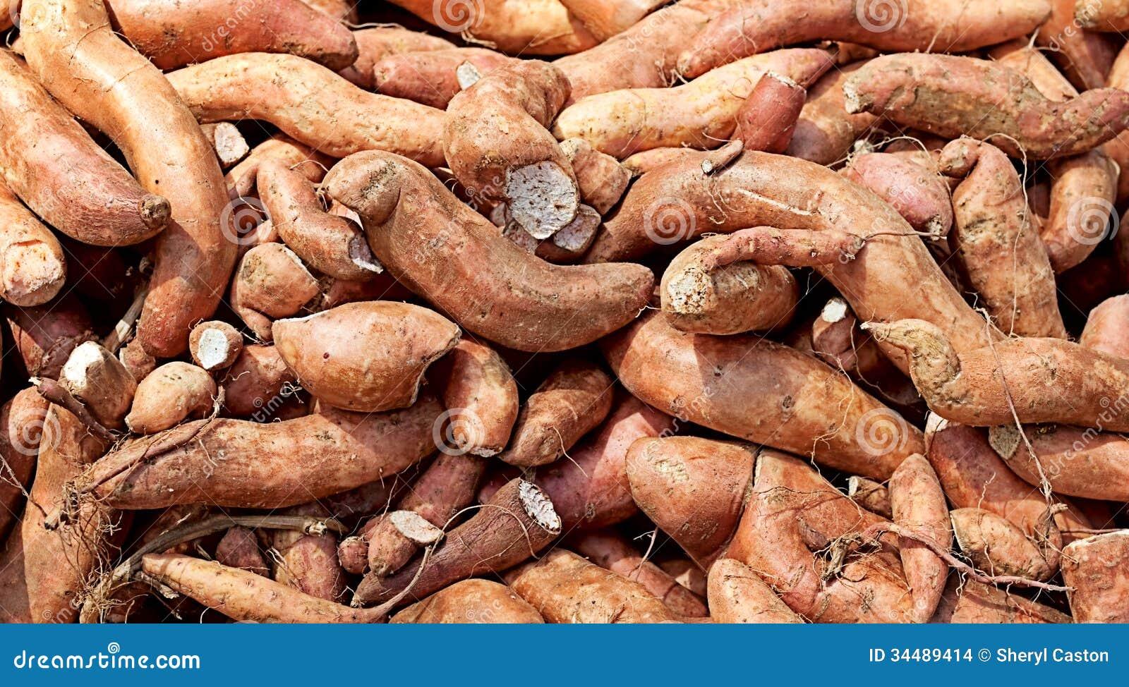 Fondo del carboidrato dell igname della patata dolce