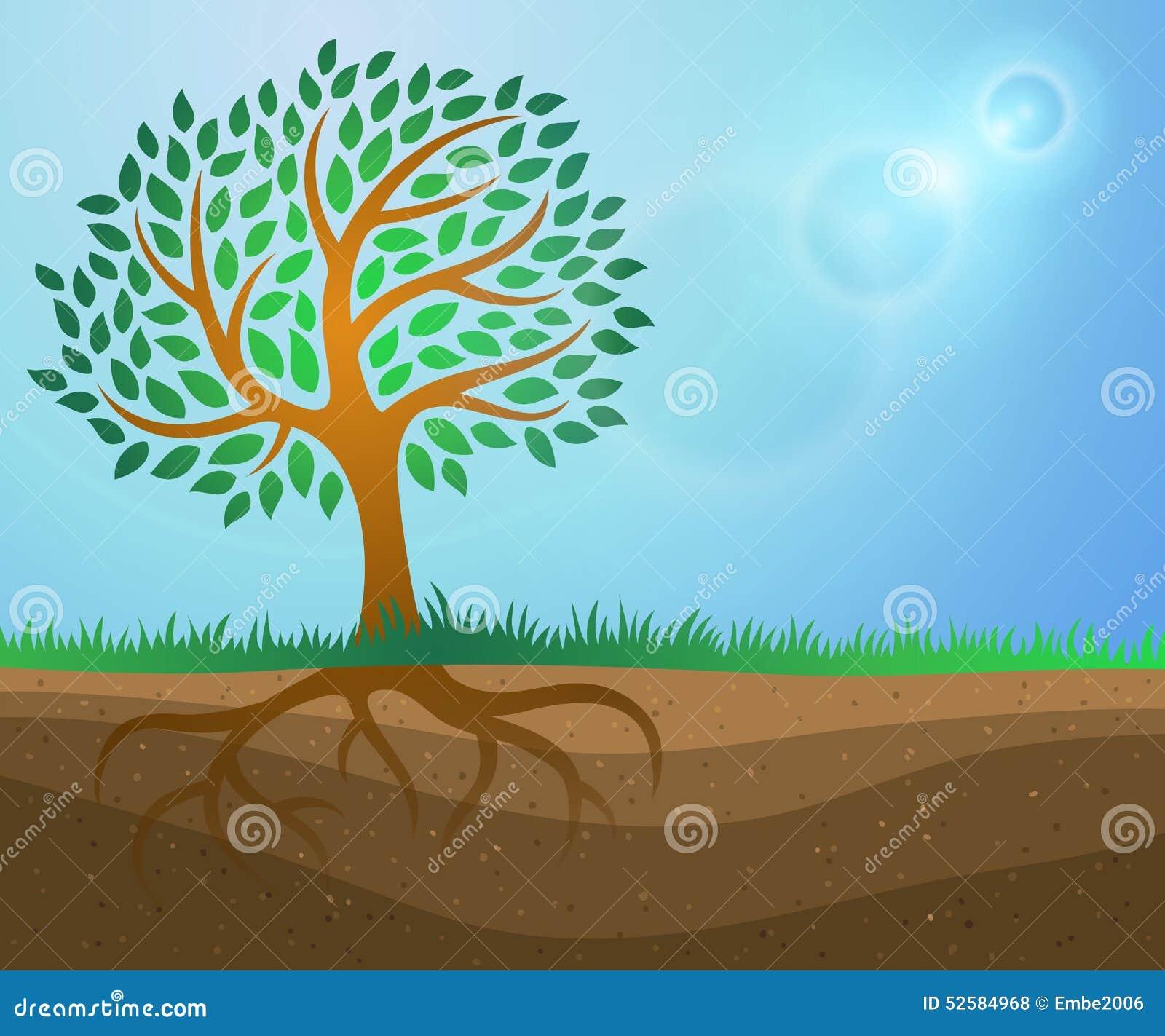 Fondo del crecimiento del árbol