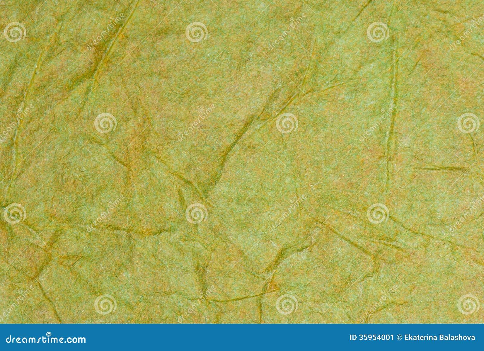 Fondo del Libro Verde