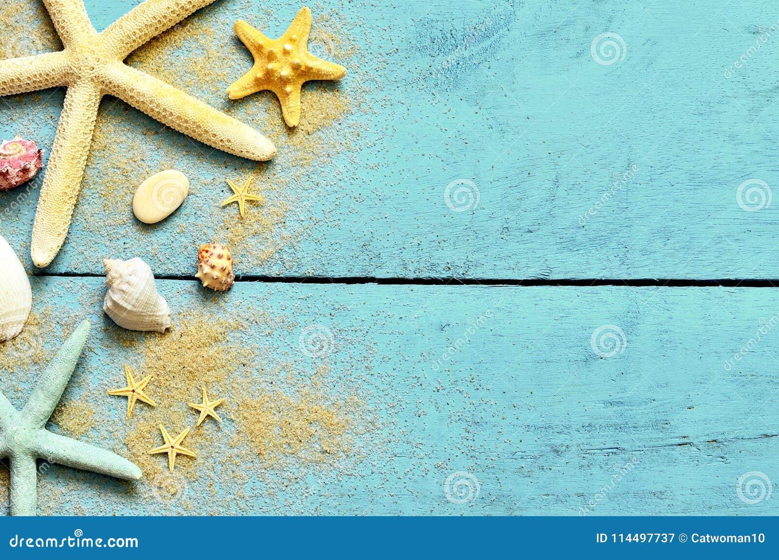 Fondo del mar del verano Estrellas de mar, conchas marinas y arena en un fondo azul de madera